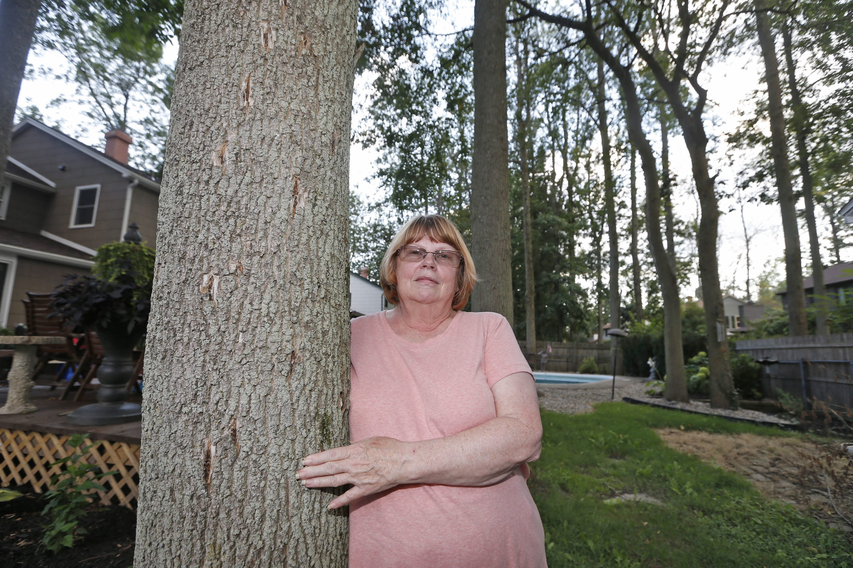 Judy Niemira had nine ash trees forming a cooling canopy over her East Amherst backyard. But she lost oneof them to the emerald ash borer, which has caused her to invest $1,300 in treatments to protect the others.