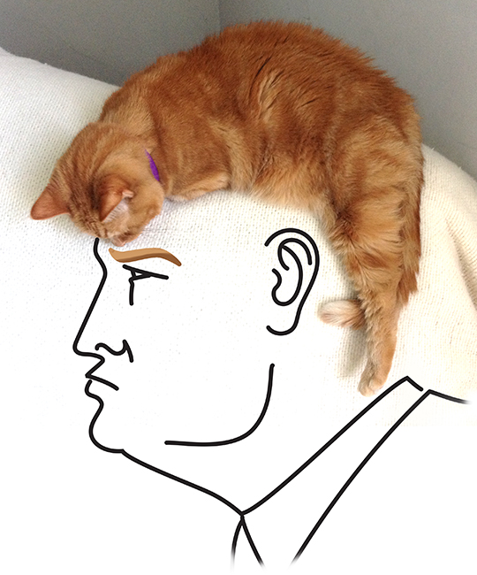 Michael Gelen's illustration of Republican presidential front-runner Donald Trump has been widely shared online. Image from inkwellstudios.blogspot.com.