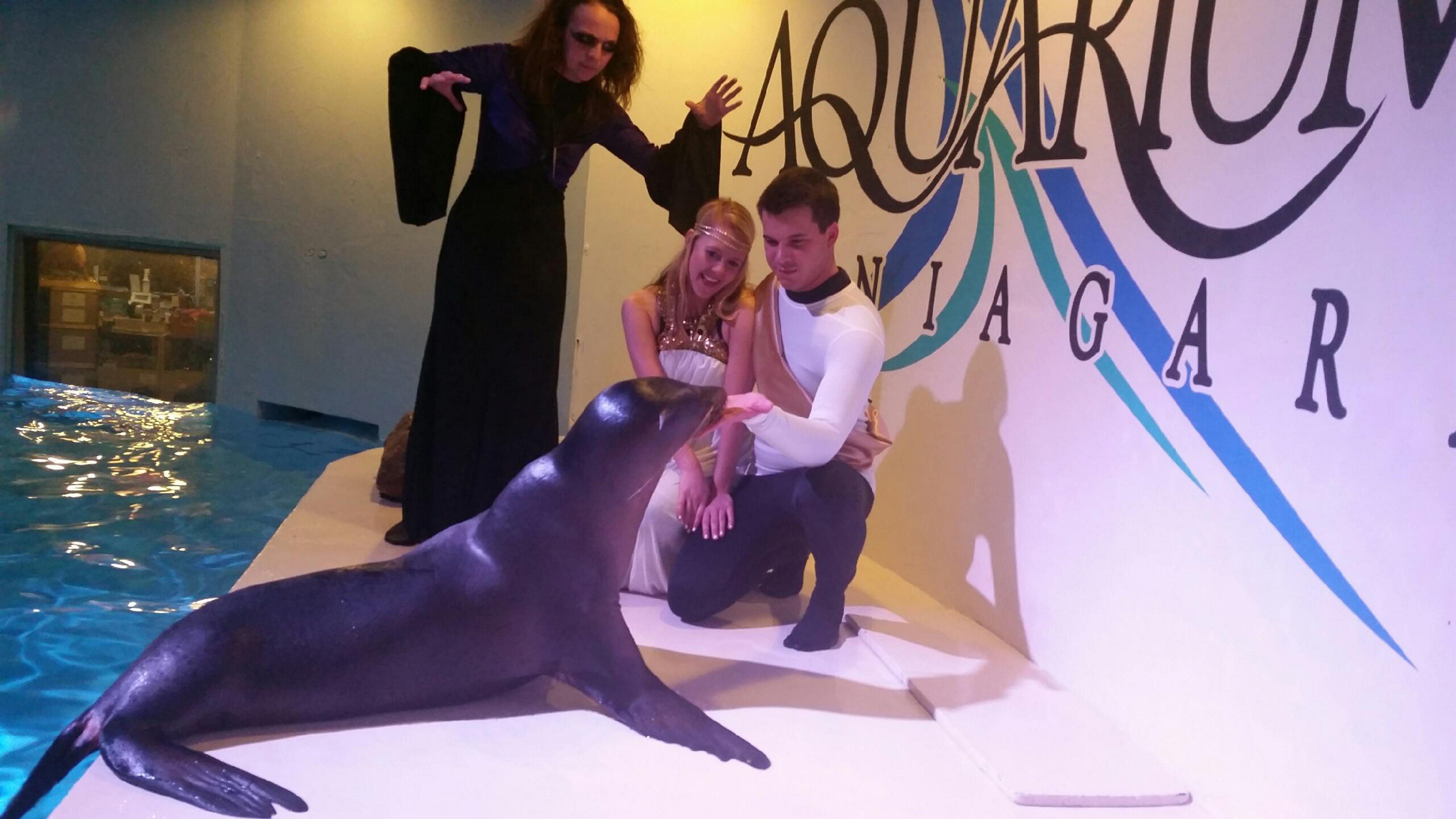 The Aquarium of Niagara hosts Halloween Happenings on Oct. 24.
