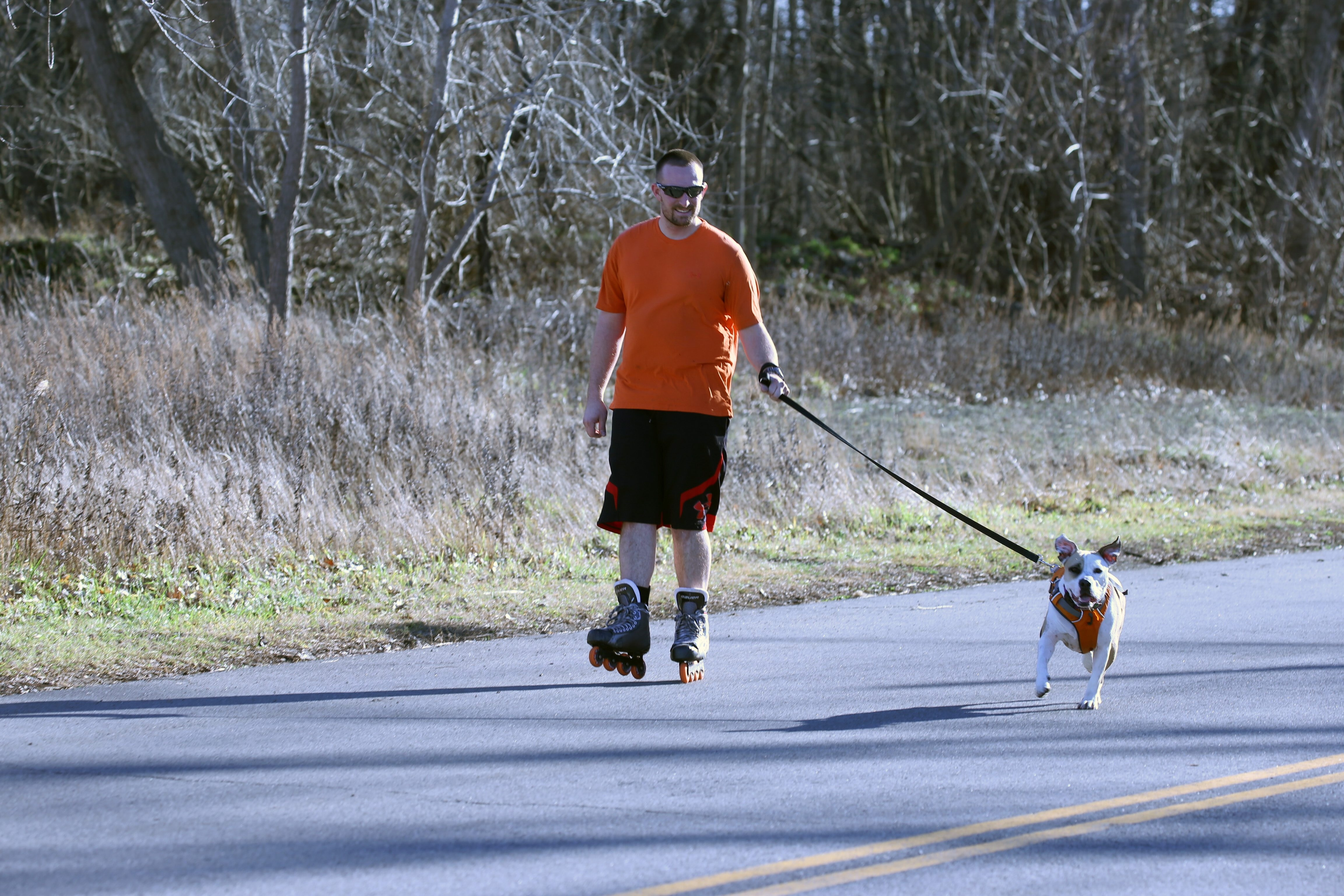 Jim Smith picked a fine December Thursday to rollerblade with his dog Maggie on Hopkins Road in Amherst. They won't have to worry about snow anytime soon.