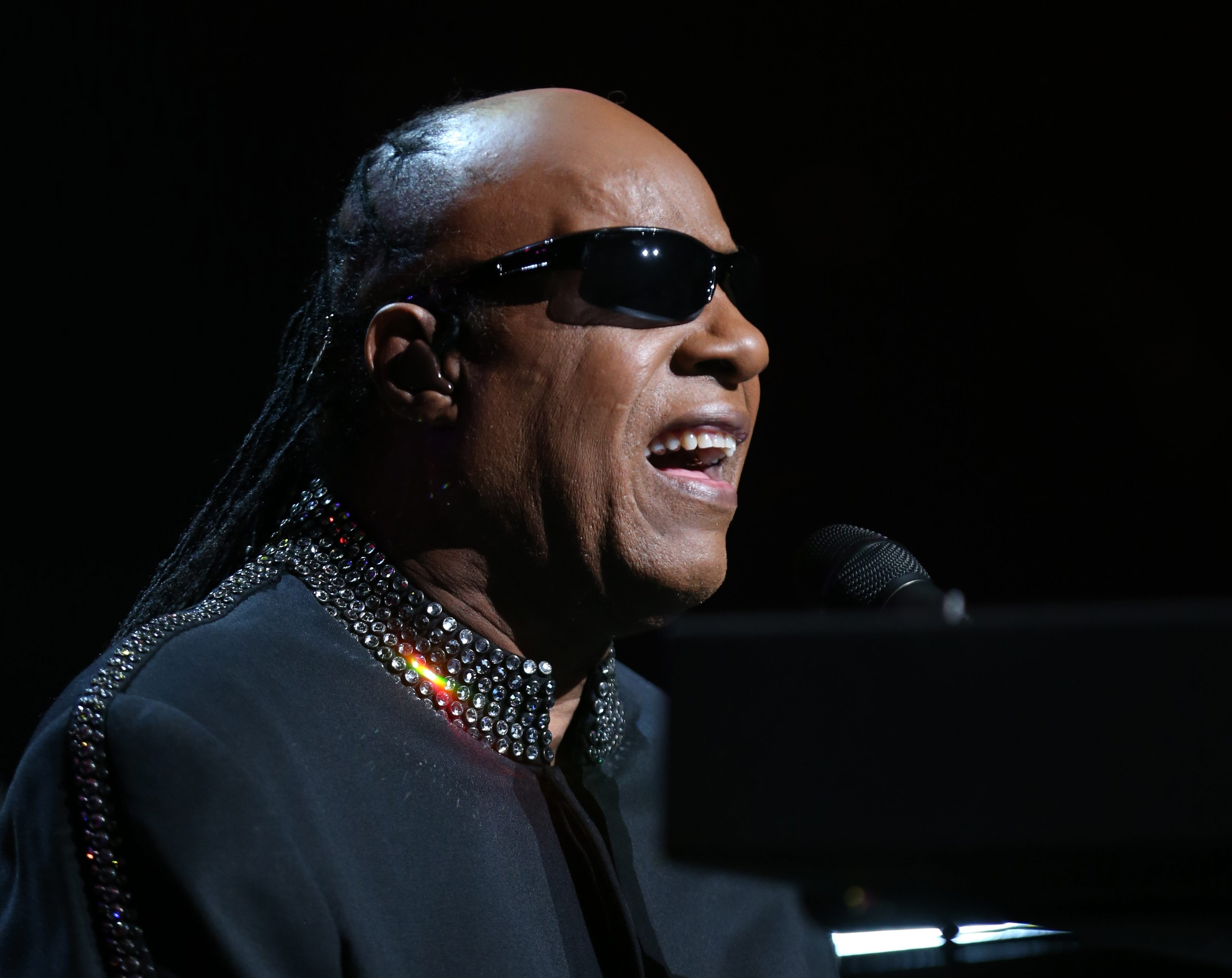 Stevie Wonder's four-hour concert at First Niagara Center was one of the great concerts of the year. (Sharon Cantillon/Buffalo News)