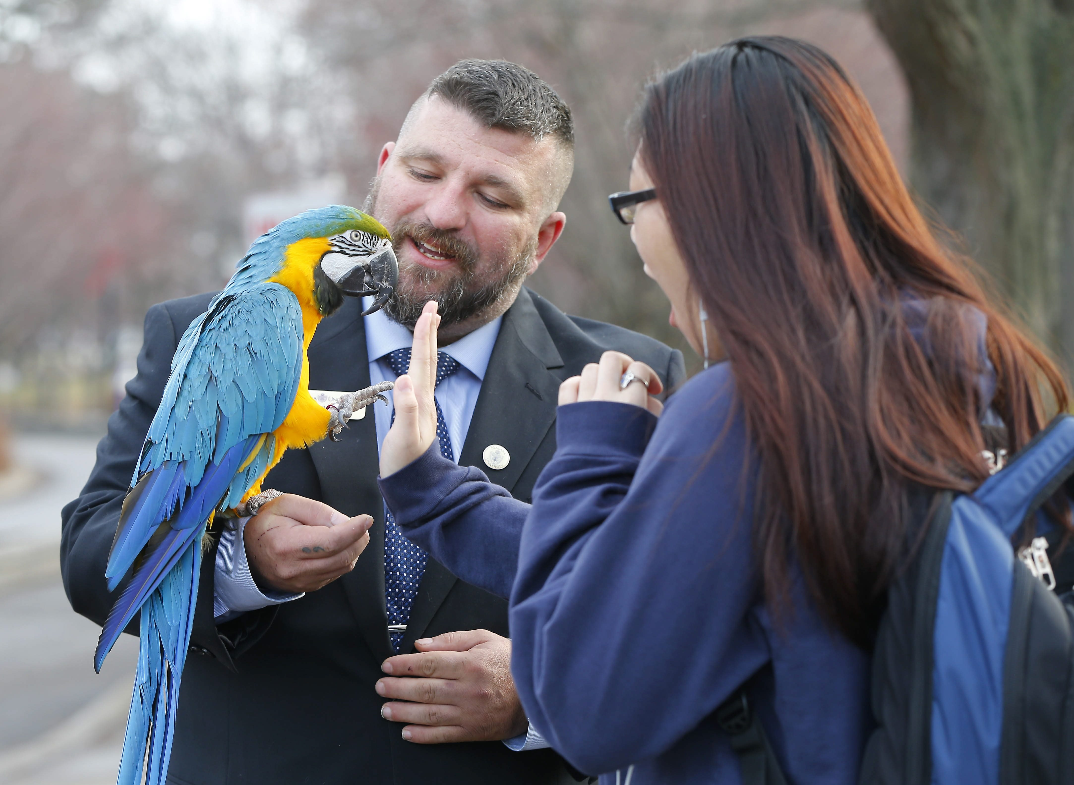 Karl R. Hinterberger, assistant veterans coordinator at Niagara University, encourages his prescribed service animal, Selina, as she shares a high-five with student Jessica Nguyen during a walk on campus.