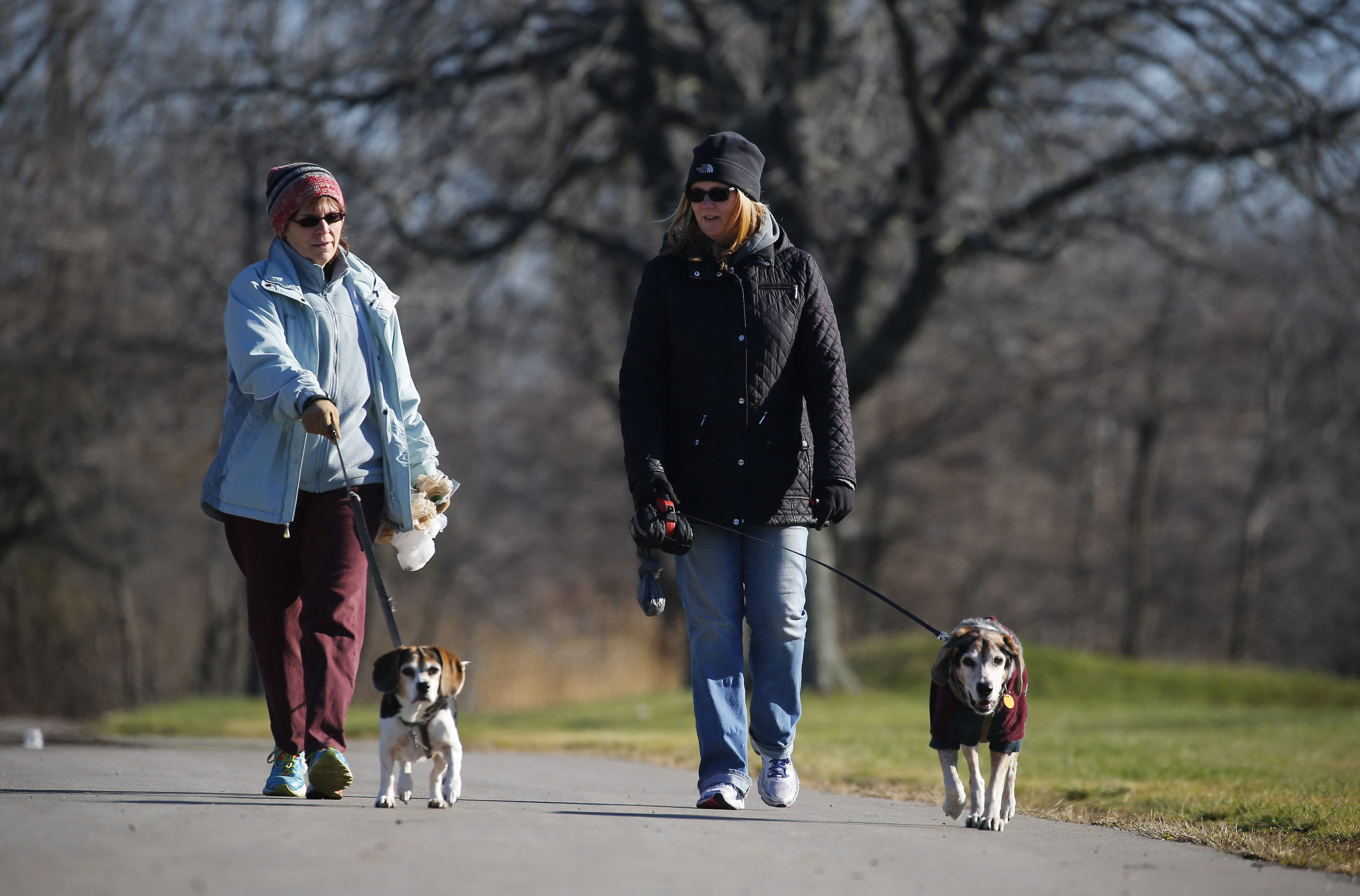 With the sun shining and temperatures in the 40s on Monday, Margaret Griffin, left, and Kelly Bebak walked their dogs without dodging the elements. The weather forecast for the upcoming weekend calls for temps in 40s and low 50s and no snow.    (Mark Mulville/Buffalo News)