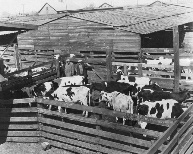 stockyards041