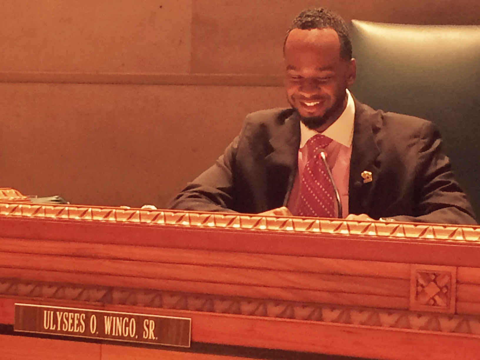 Masten Councilman Ulysees Wingo Thursday chairs his first Council Committee session