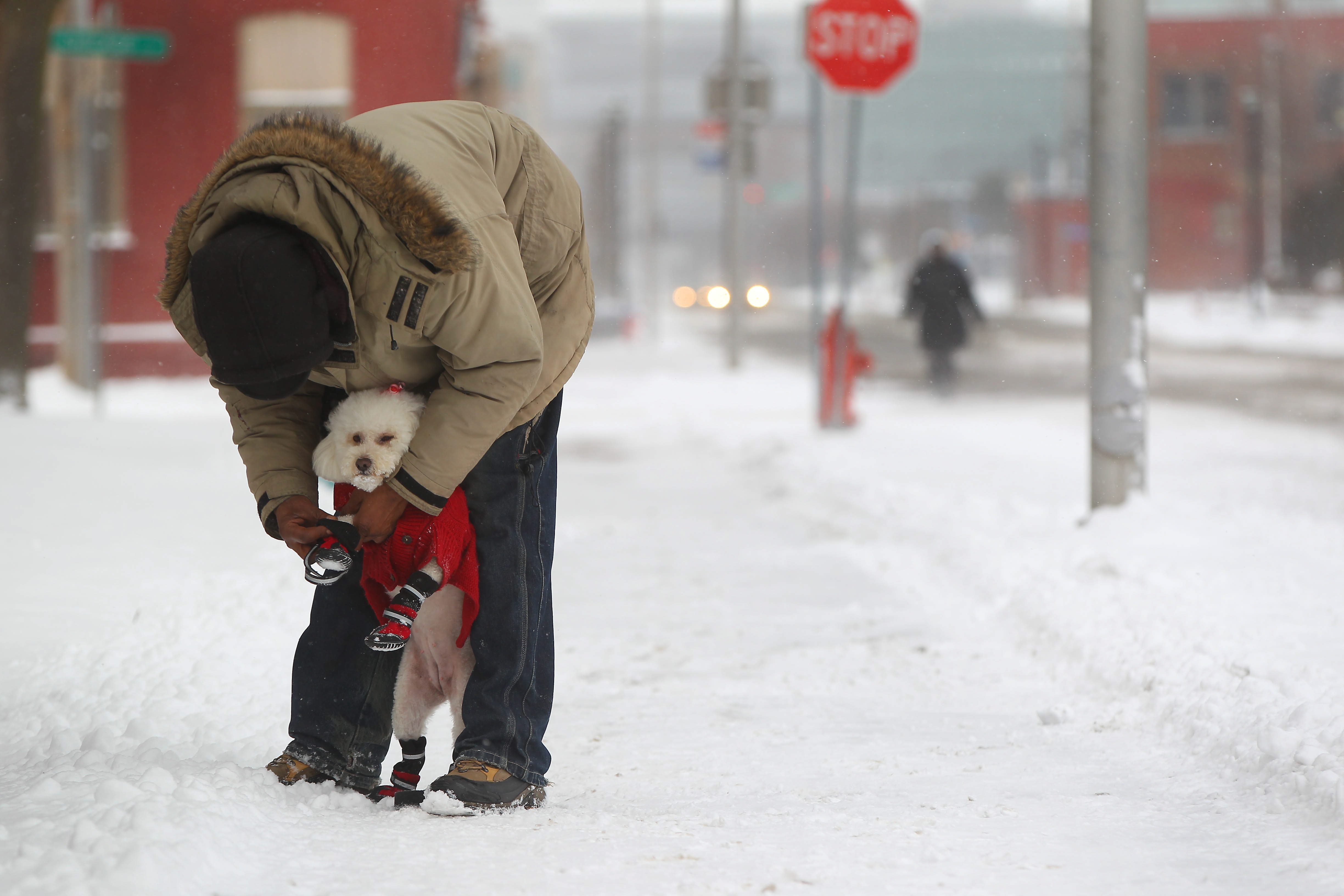 Joe Moore tightens the shoes on his dog Teddy as they walk on Perry St in Buffalo Friday, February 12, 2016.   (Mark Mulville/Buffalo News)
