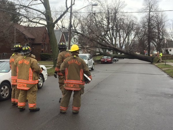 A large tree fell on a car and knocked down power lines on Whitehall Avenue in South Buffalo due to high winds Wednesday morning. (John Hickey/Buffalo News)