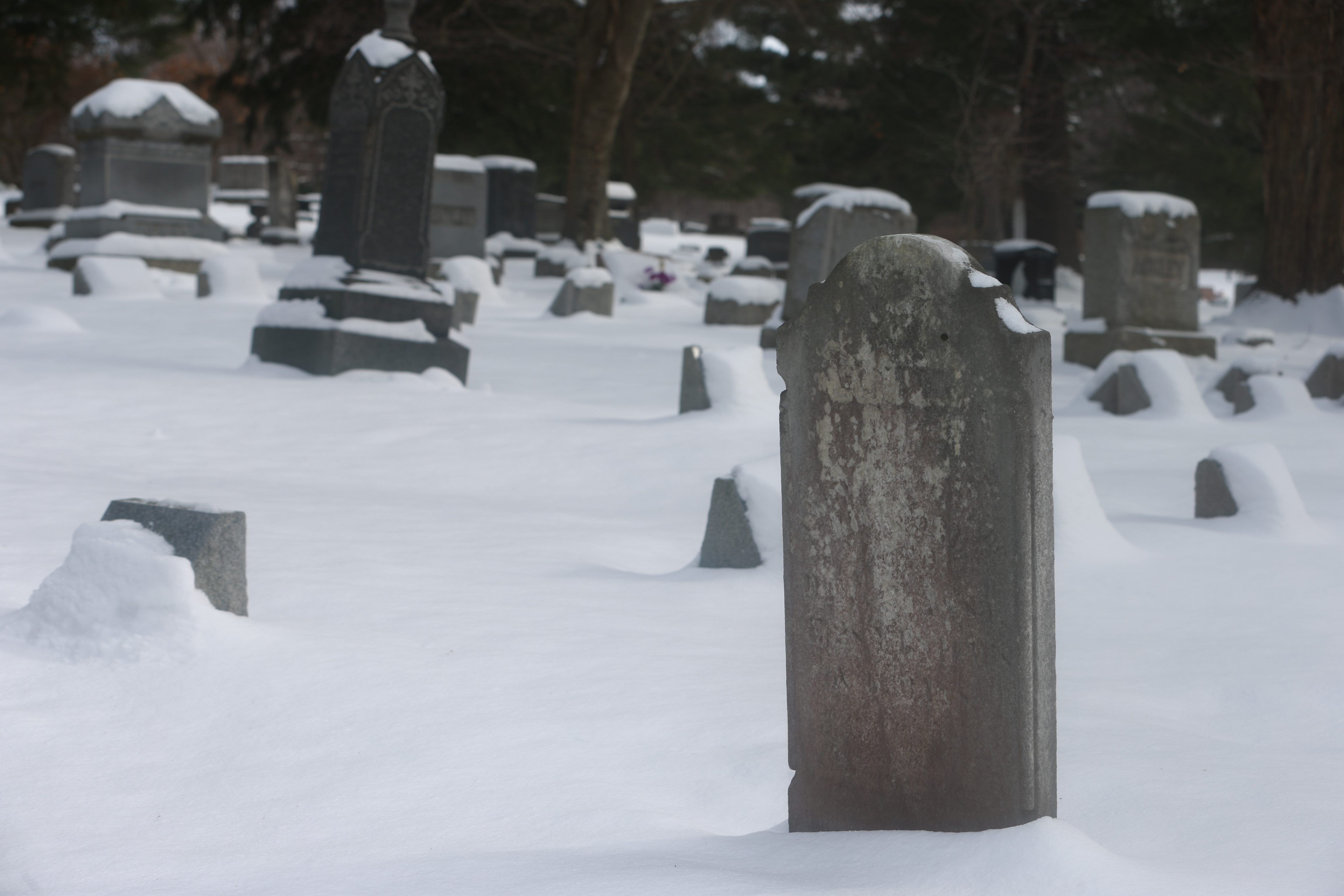 Pine Hill Cemetery, above, in Gowanda and Maple- wood Cemetery in Springville both were subjected to headstone theft, and a 21-year-old man is charged.