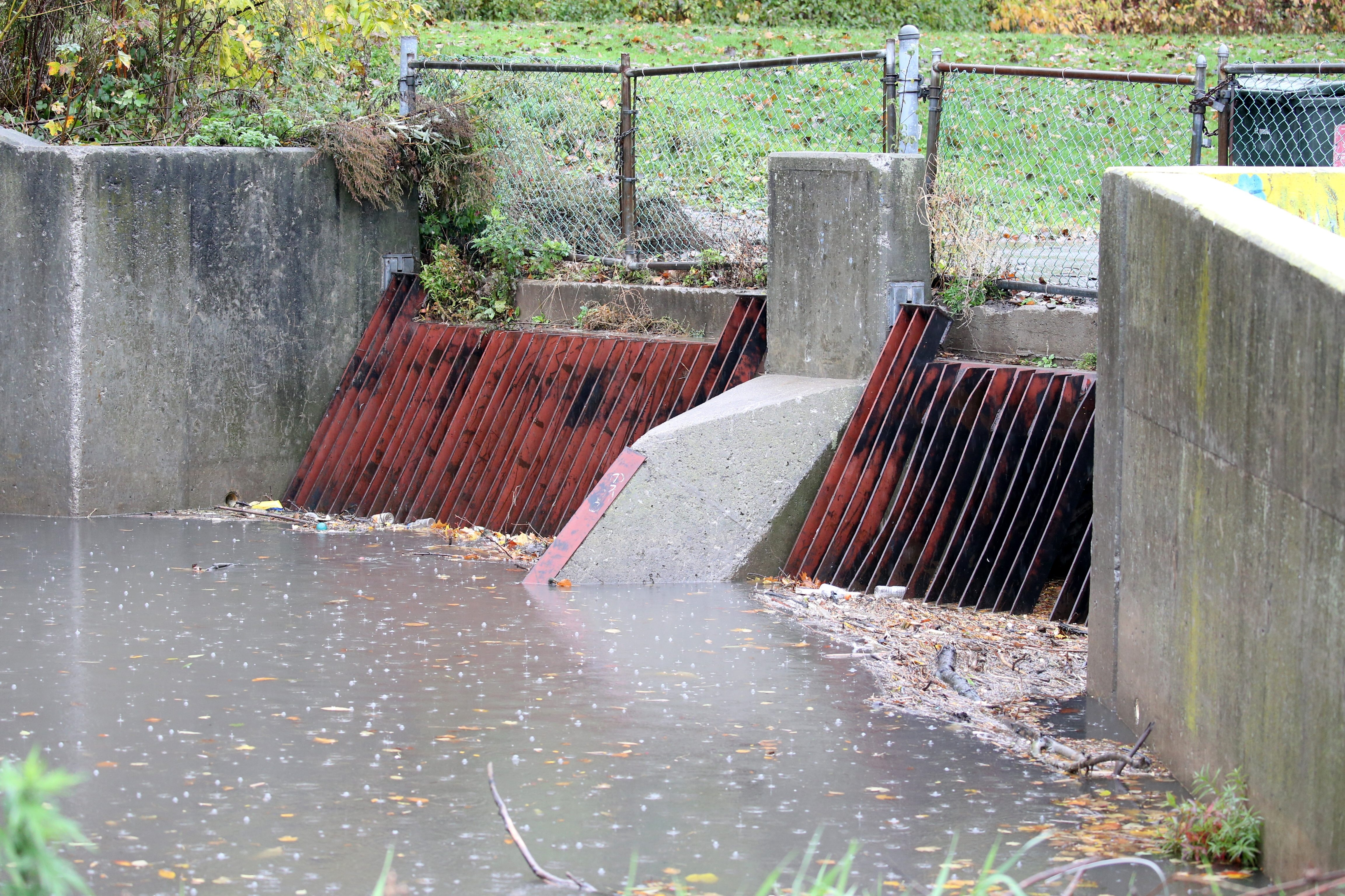 The cleanup of Western New York waterways, including Scajaquada Creek, is threatened by unwarranted congressional efforts to cut funding for the Clean Water State Revolving Fund.