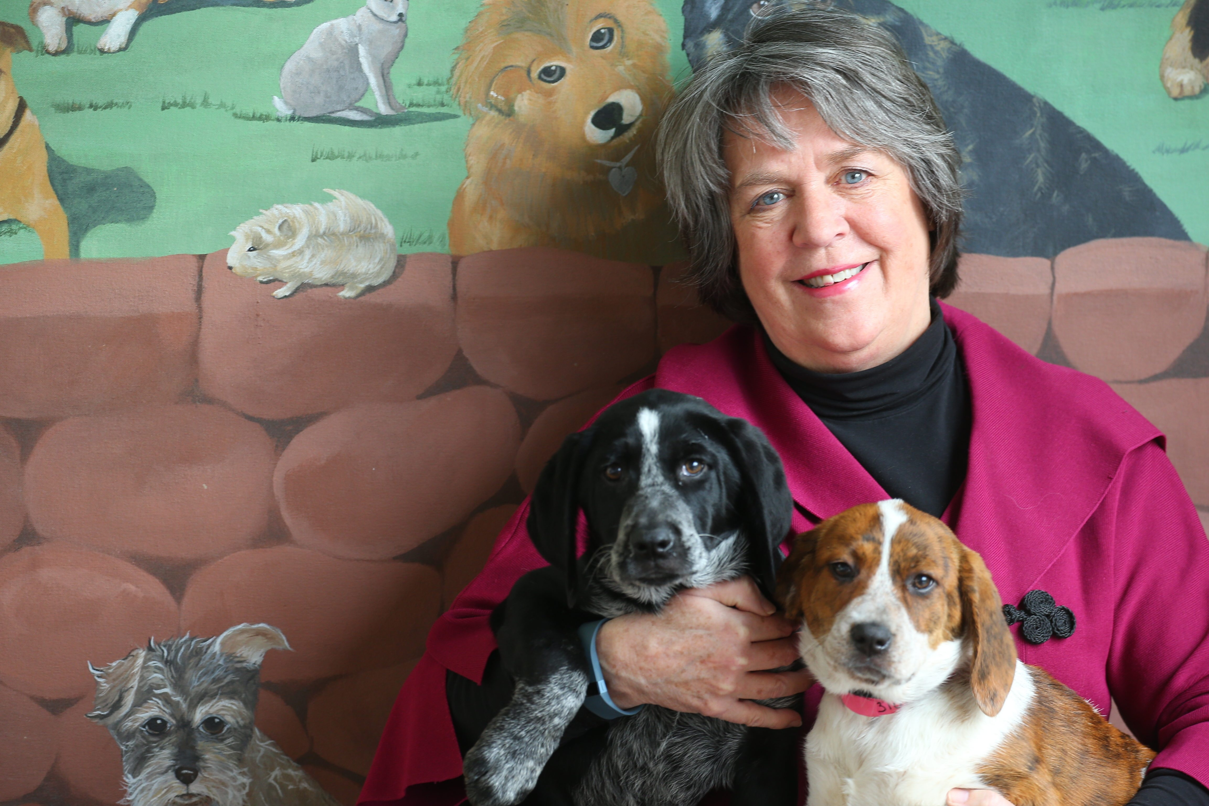 Barbara Carr holds puppies up for adoption on her last day on the job as executive director of the SPCA Serving Erie County.