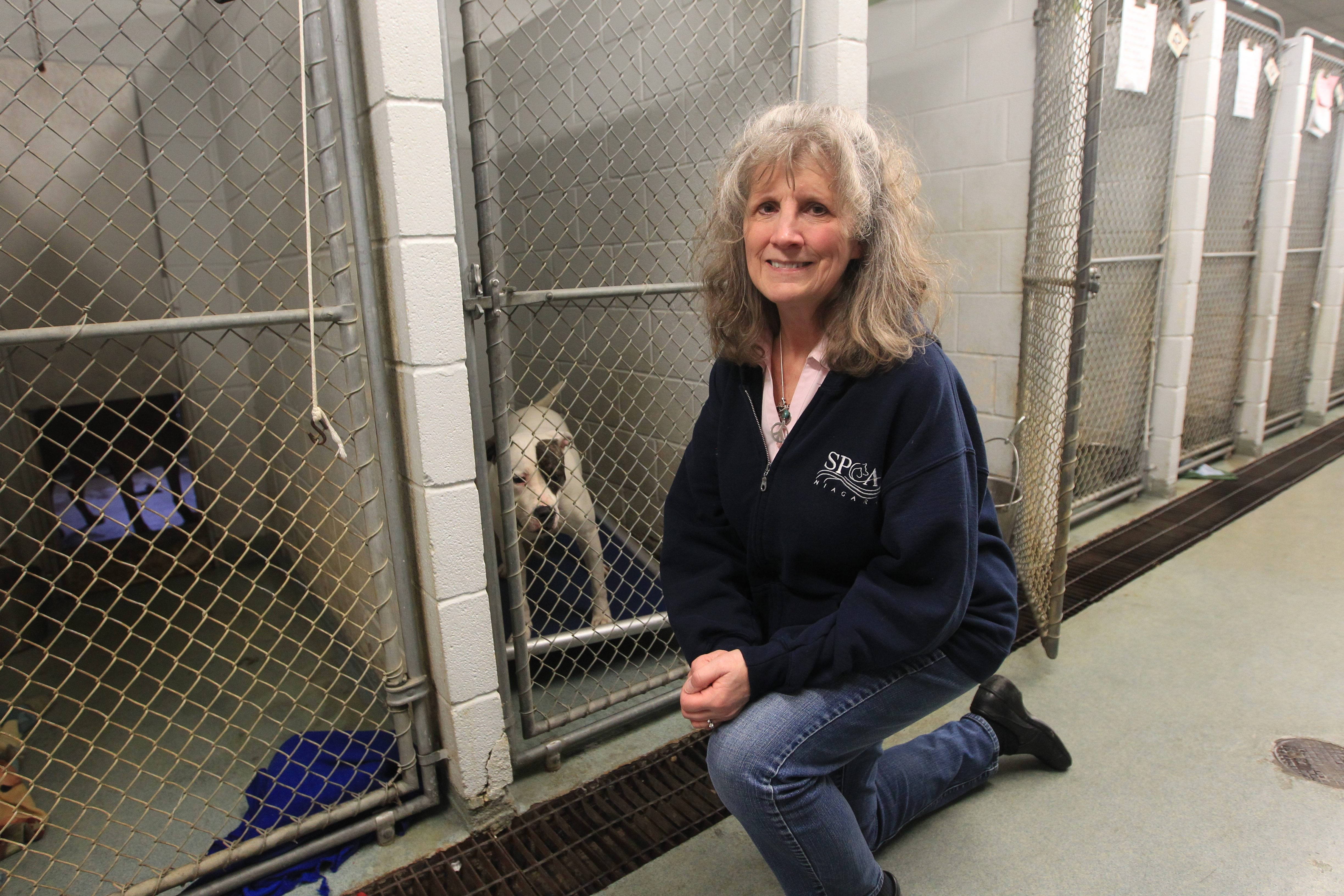 Polla Milligan, director of marketing and development for the Niagara County SPCA, works hard to make sure the shelter can continue to give animals a second chance.