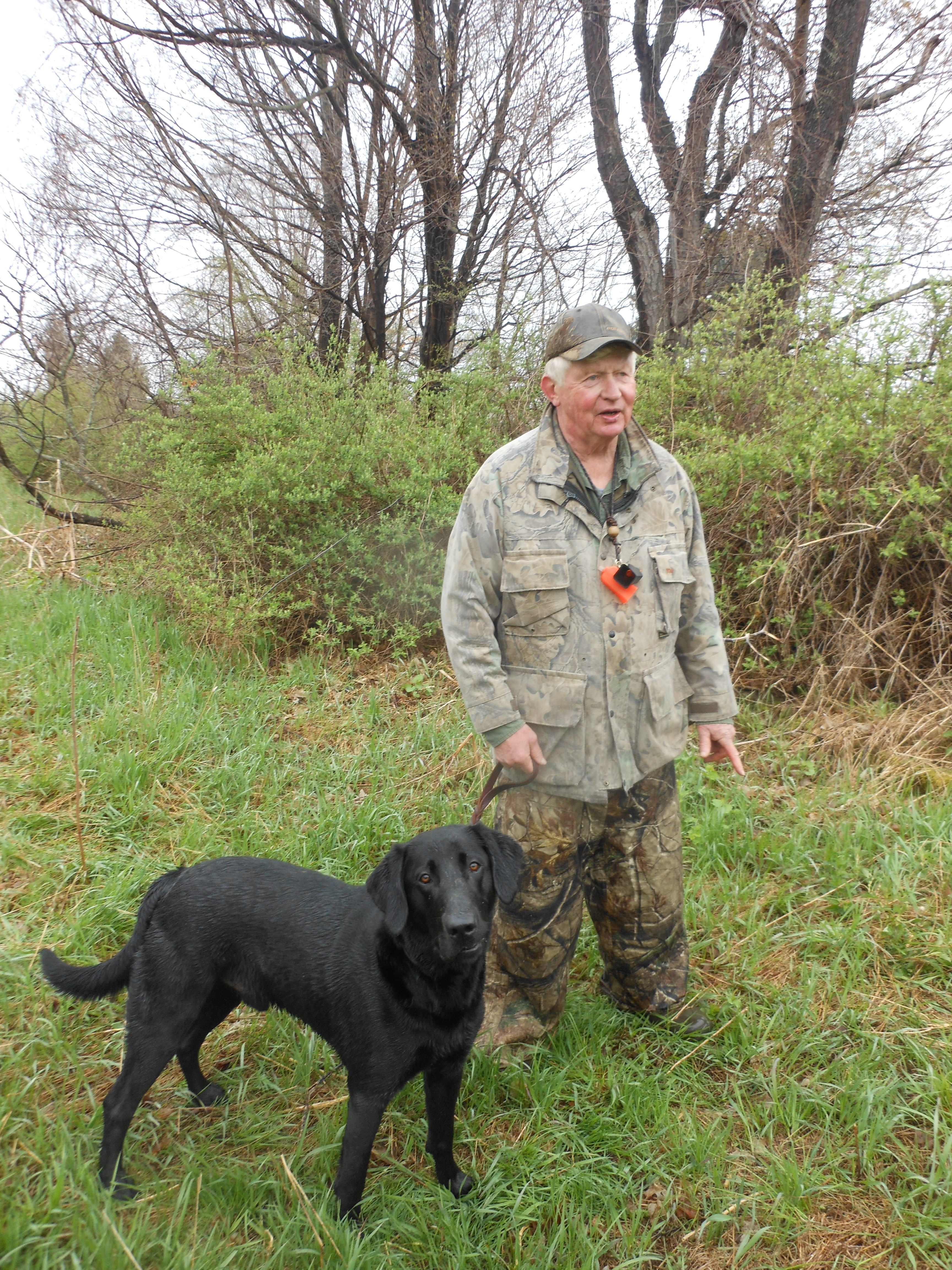 Jim Karr, Empire Retriever Club event coordinator, and 2-year-old Harley get ready for hunt-like field and water trials at the Tonawanda Wildlife Management area in Wolcottsville.