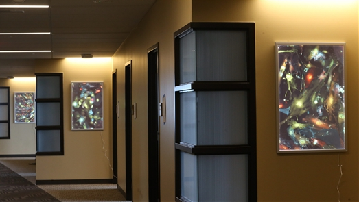 Art showcase at Roswell Park's Bieler Clinical Sciences Center