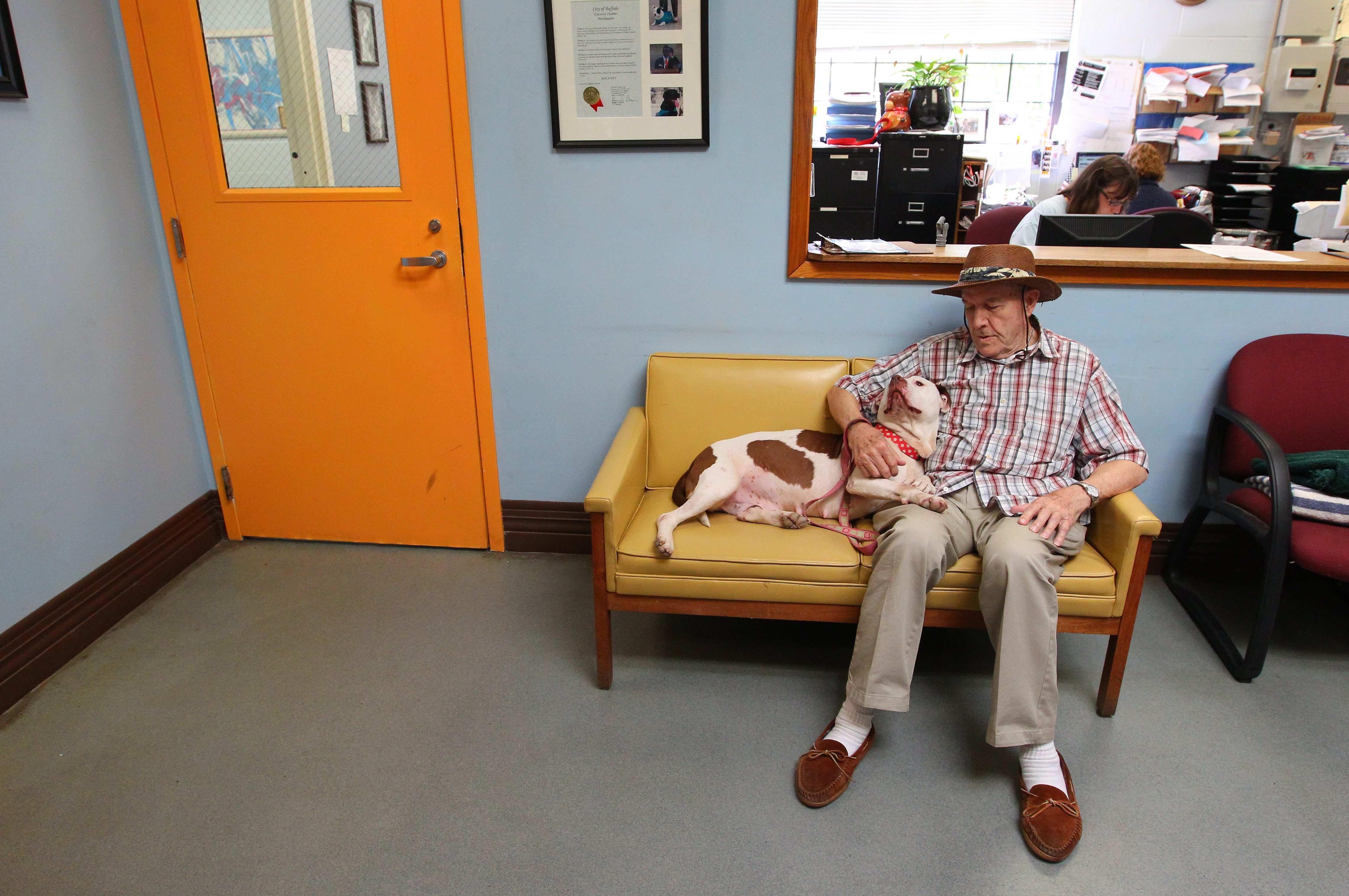 Rev. Monsignor Leon Neu, a volunteer dog walker, rests after a walk with Cece in the lobby of the Buffalo City Animal Shelter. (Mark Mulville/Buffalo News)