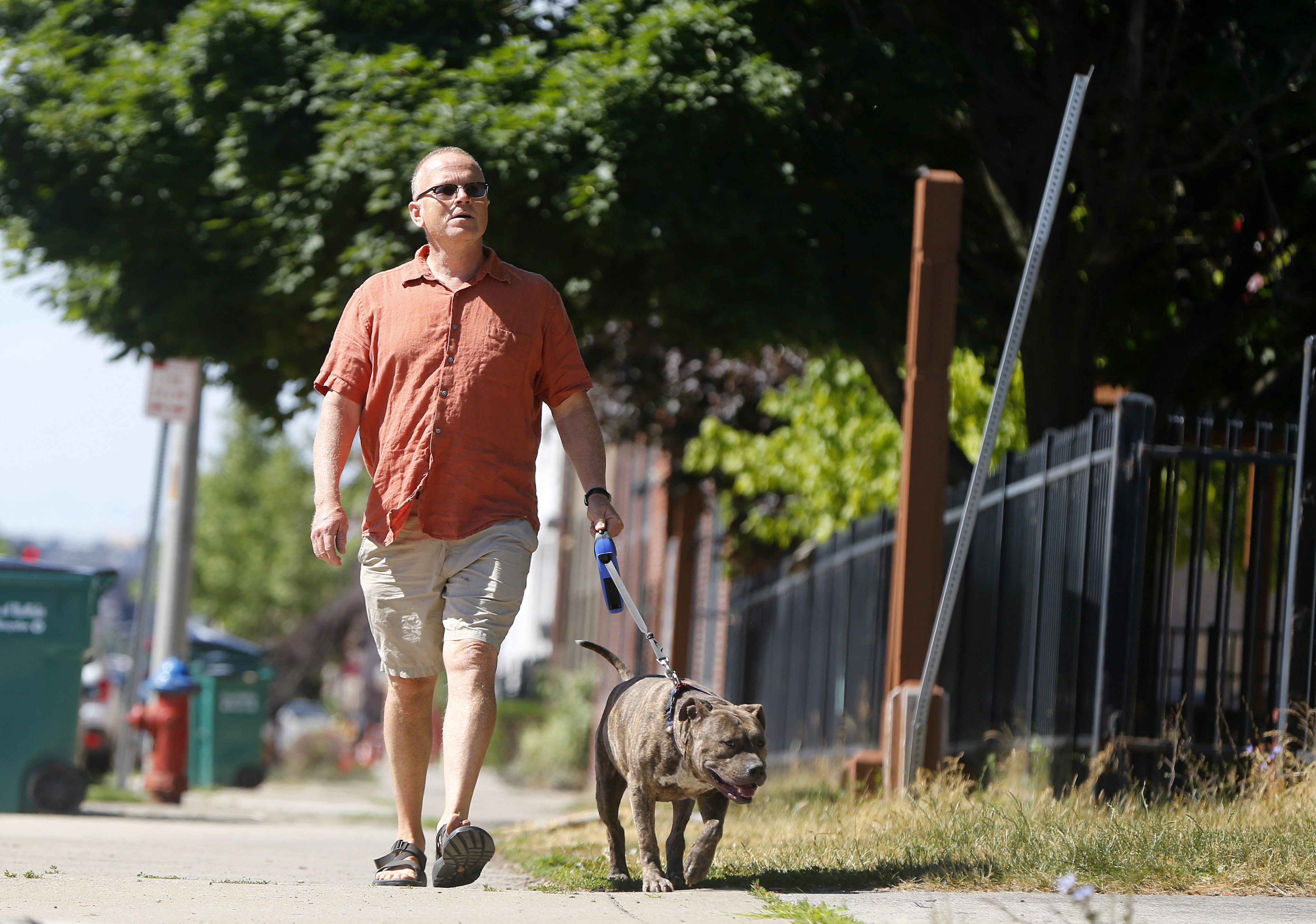 Tom Higgins a volunteer dog walker takes 'Max' for a stroll at the Buffalo City Animal shelter Wednesday, June 22, 2016.    (Mark Mulville/Buffalo News)