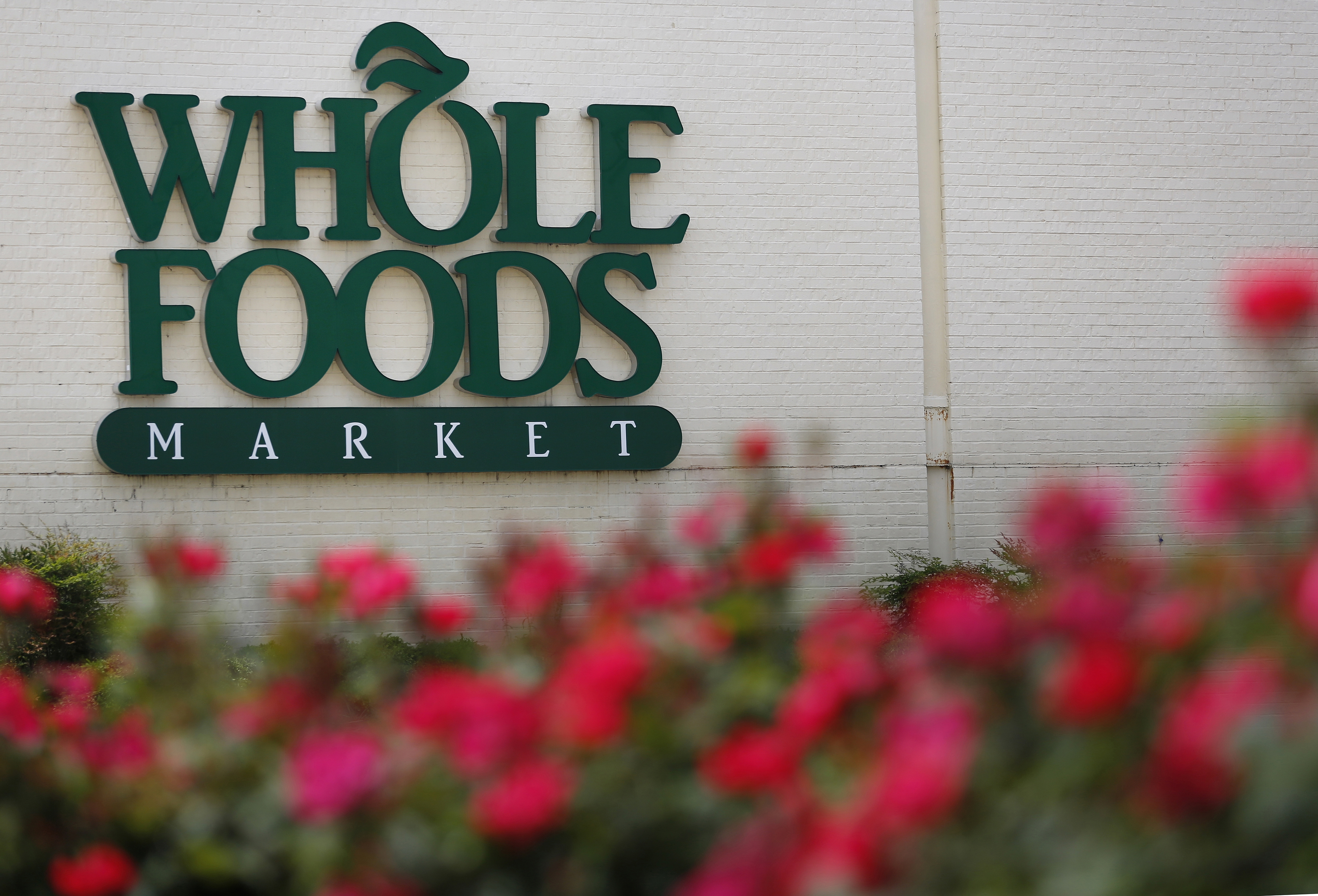 Whole Foods has started construction on its store in the Northtown Plaza in Amherst. (Bloomberg News)