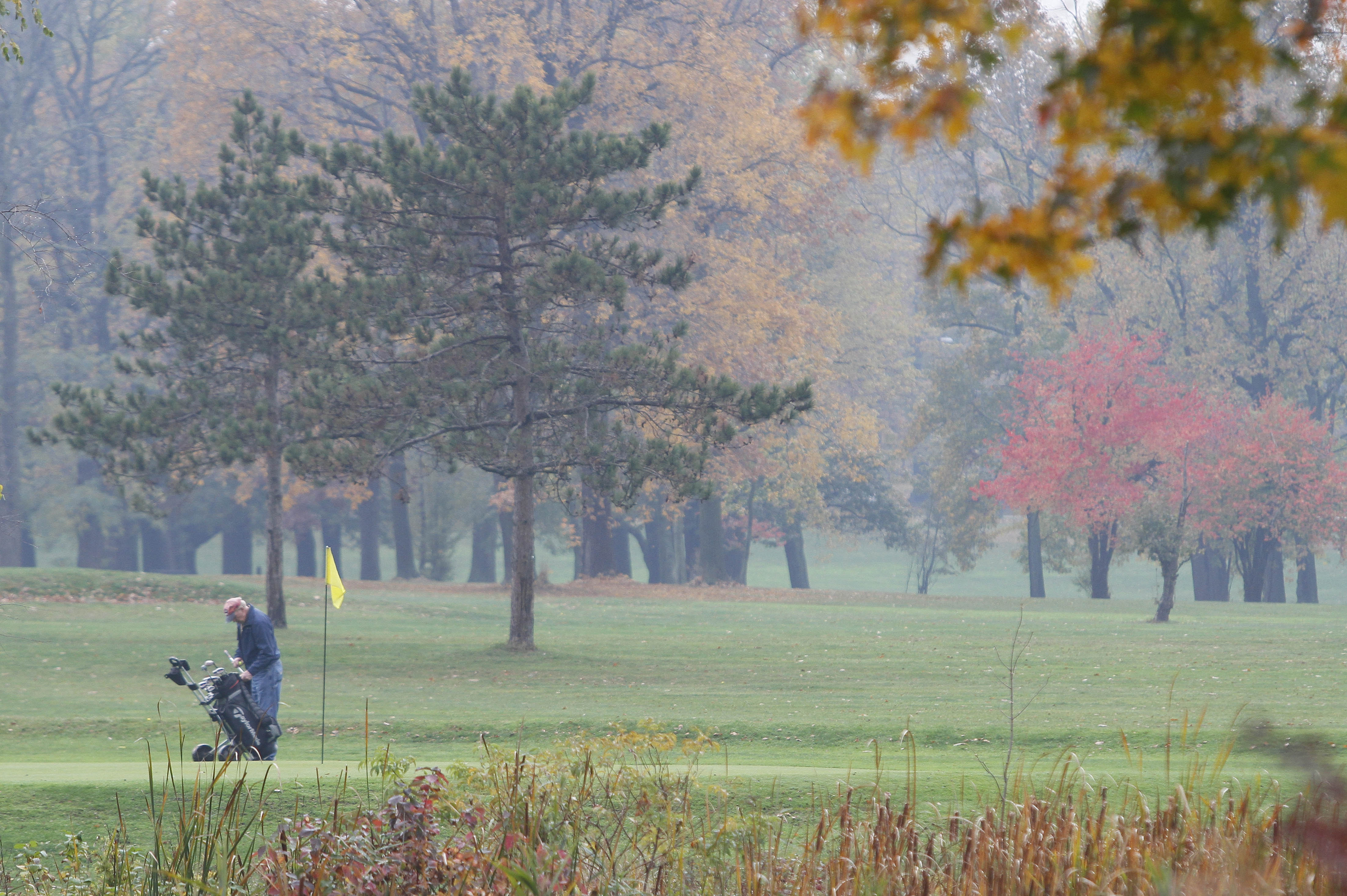 A golfer plays at the South Park golf course. The Olmsted conservancy would like to relocate the course in order to restore Frederick Law Olmsted's plan for an arboretum at South Park.   (Mark Mulville / Buffalo News file photo)