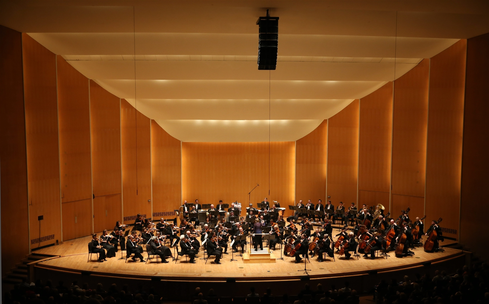 One of the brilliant images of Kleinhans from The News' gallery. (Sharon Cantillon/Buffalo News file photo)