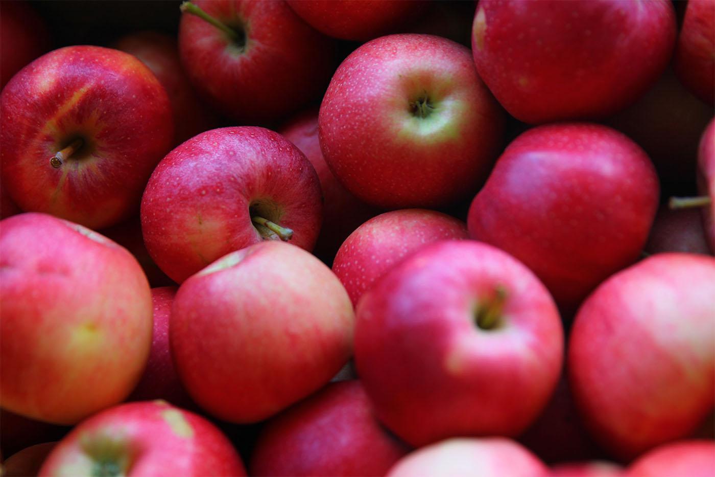 Celebrate Apple Day in Western New York. (John Hickey/News file photo)