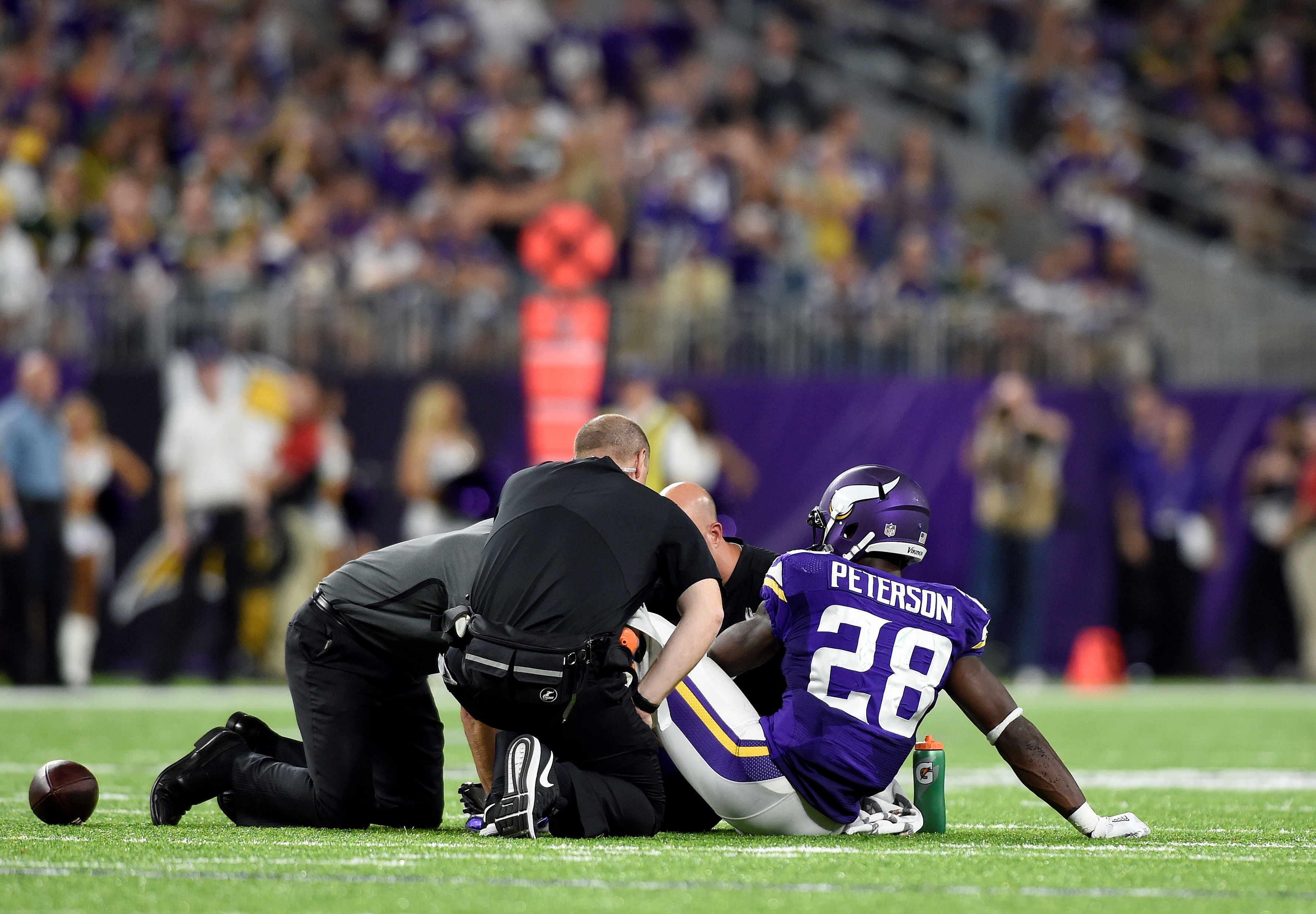 With Adrian Peterson, one of the few workhorse RBs in the league, lost for the season, fantasy players everywhere will be looking to the Minnesota backfield for value.