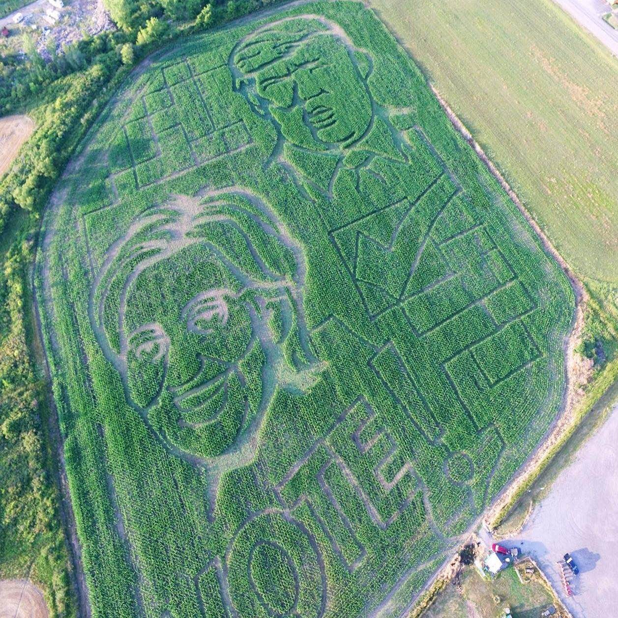 Yep. It's what you think it is. A Presidential ticket. (Photo Courtesy: Cambria Corn Maze)