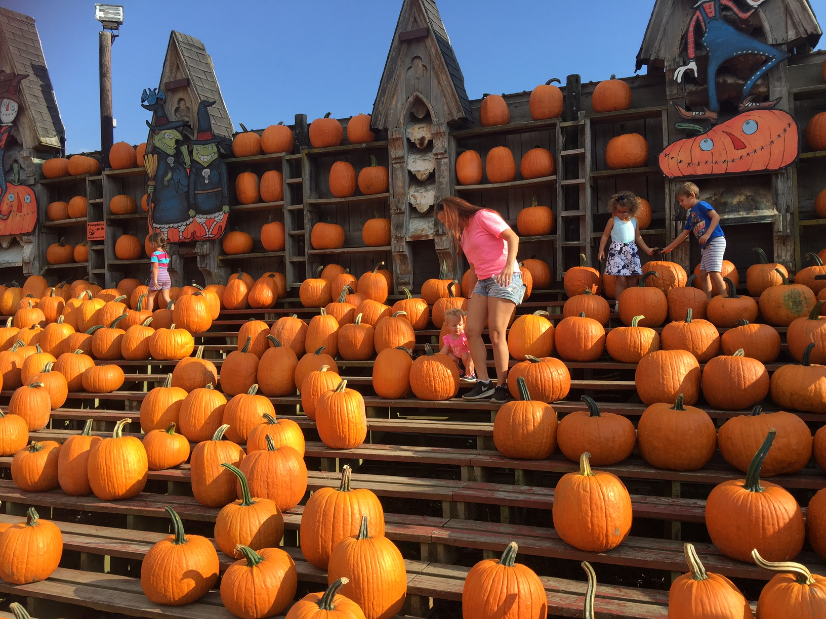 Plenty of pumpkins to buy, too. Mary Friona-Celani/Special to The News