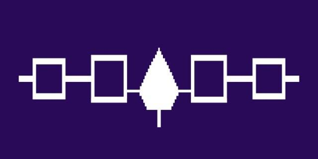 The flag of the Haudenosaunee, or Iroquois Confederacy, as created by Harold and Tim Johnson: BAsed on the Hiawatha belt, five nations, centered on a tree of peace. (Image courtesy of Tim Johnson)
