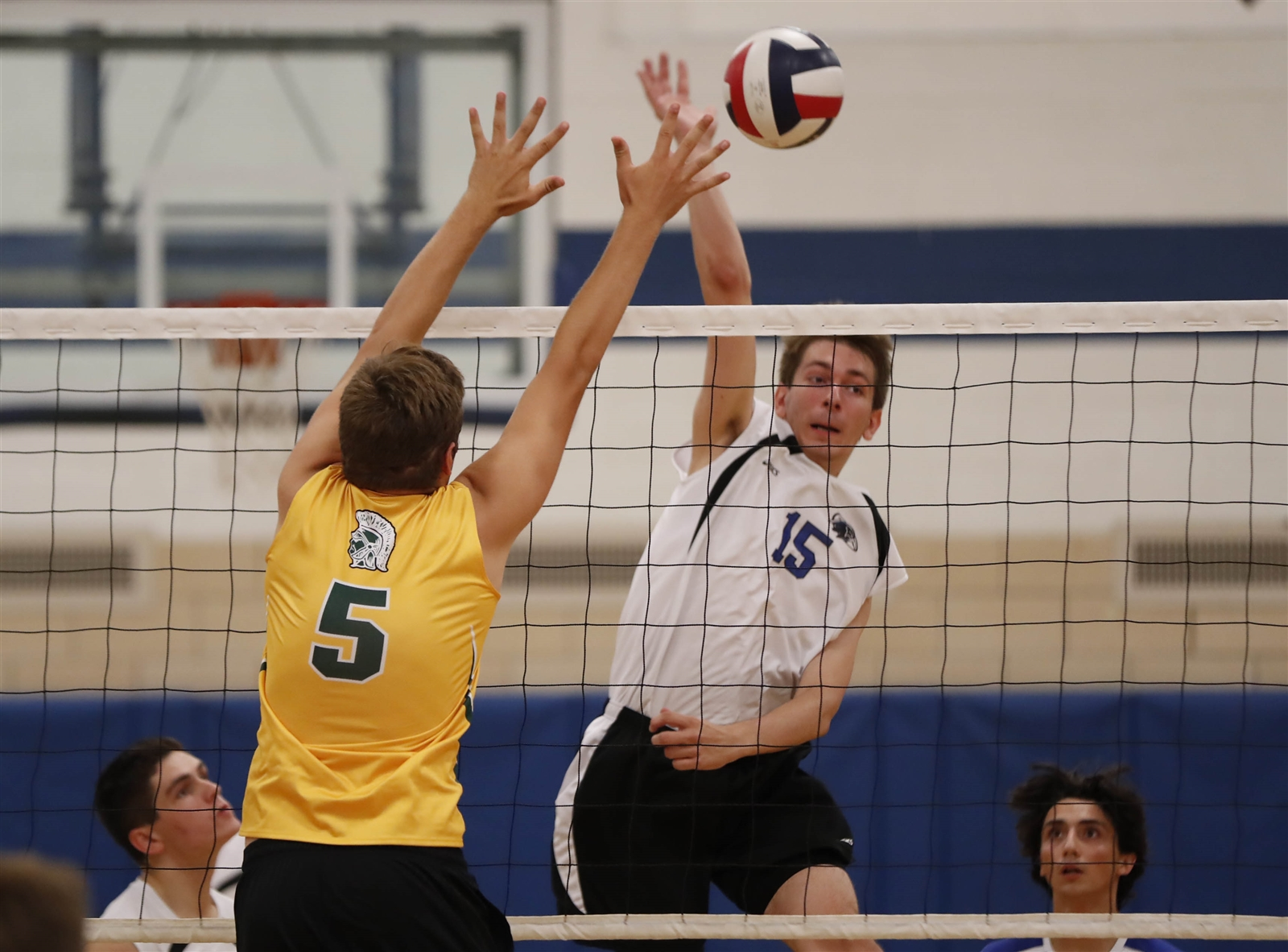 Dylan Tylock and Frontier head to St. Francis in one of several quality boys volleyball matches Wednesday. (Harry Scull Jr./Buffalo News)