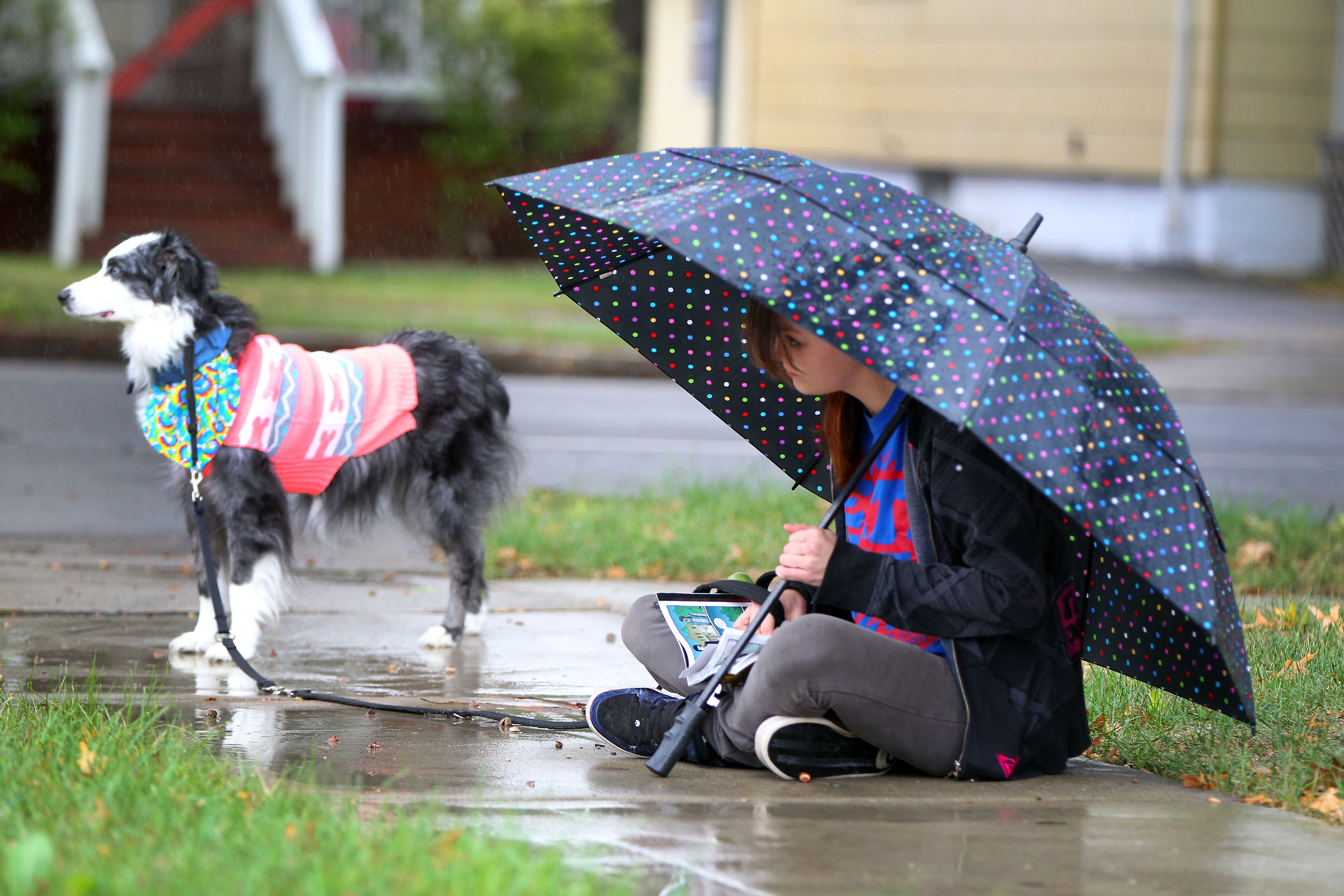 Ashley Riley waits in the rain with her dog Kodi for her daughter to get off the school bus Niagara Falls Thursday, Sept. 29, 2016.    (Mark Mulville/Buffalo News)