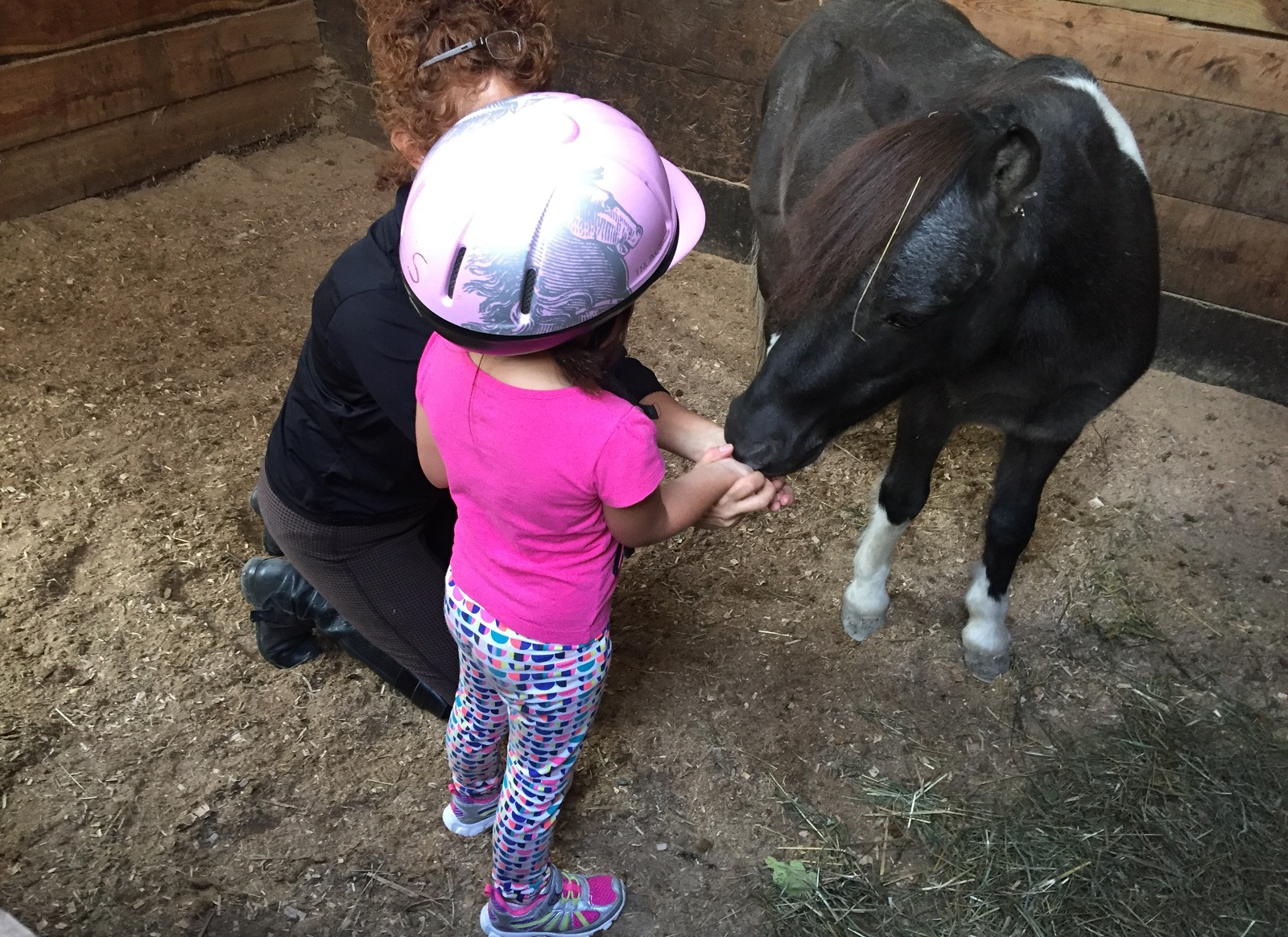 The horses are very gentle and calm at Lothlorien Therapeutic Riding Center in East Aurora. (Mary Friona-Celani/Special to The News)