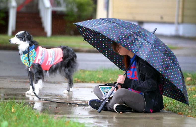 After four straight months of rainfall of less than two inches, more than 3.5 inches has fallen in Buffalo during August, September and October respectively. (Mark Mulville/Buffalo News)