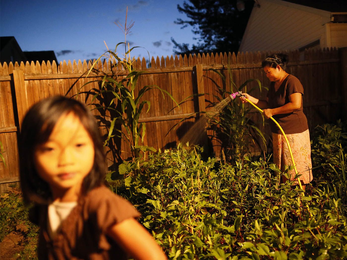 Htay Beh tends to her back yard garden as night falls, Wednesday, Aug. 12, 2015. Her daughter Paw Eh Ler Say, 4, left, plays in the driveway nearby. (Derek Gee/Buffalo News)