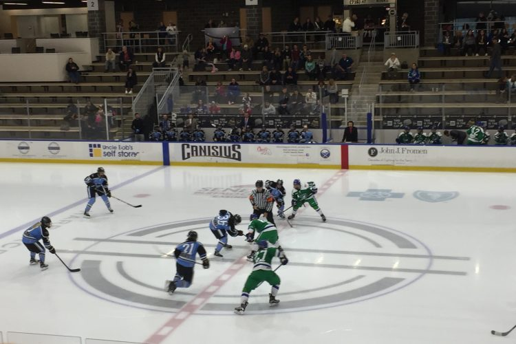 Beauts rally falls short in a 7-5 loss to Connecticut