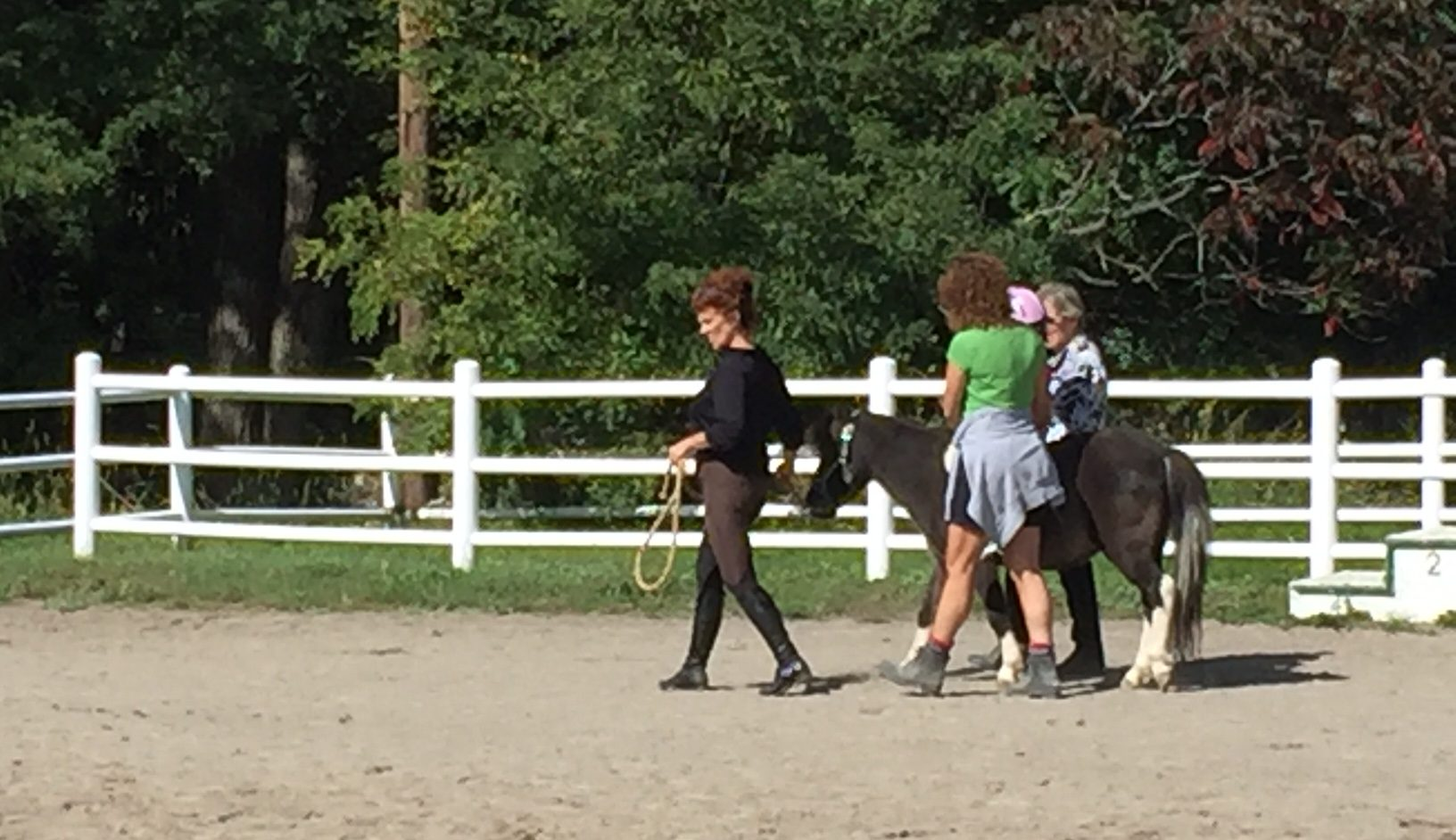 The horses are sweet and gentle. Mary Friona-Celani/Special to The News
