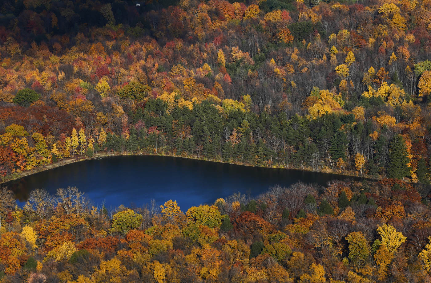 The forest surrounding the lake in Chestnut Ridge Park in Orchard Park still shows lots of autumn color, Friday, Nov. 4, 2016. (Derek Gee/Buffalo News)