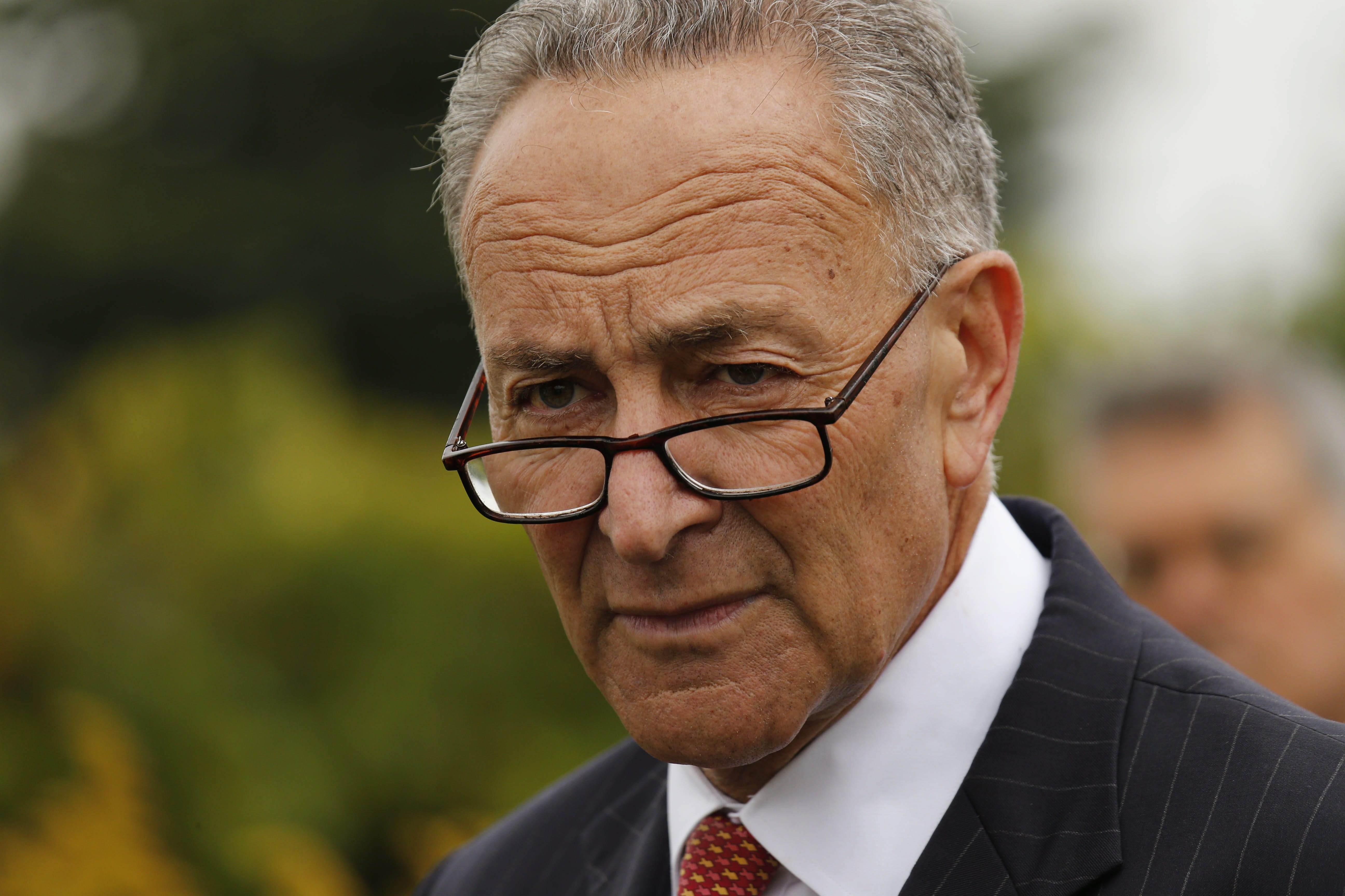Sen. Charles Schumer Senate minority will be the Democrats' last line of defense.  (Derek Gee/News file photo)