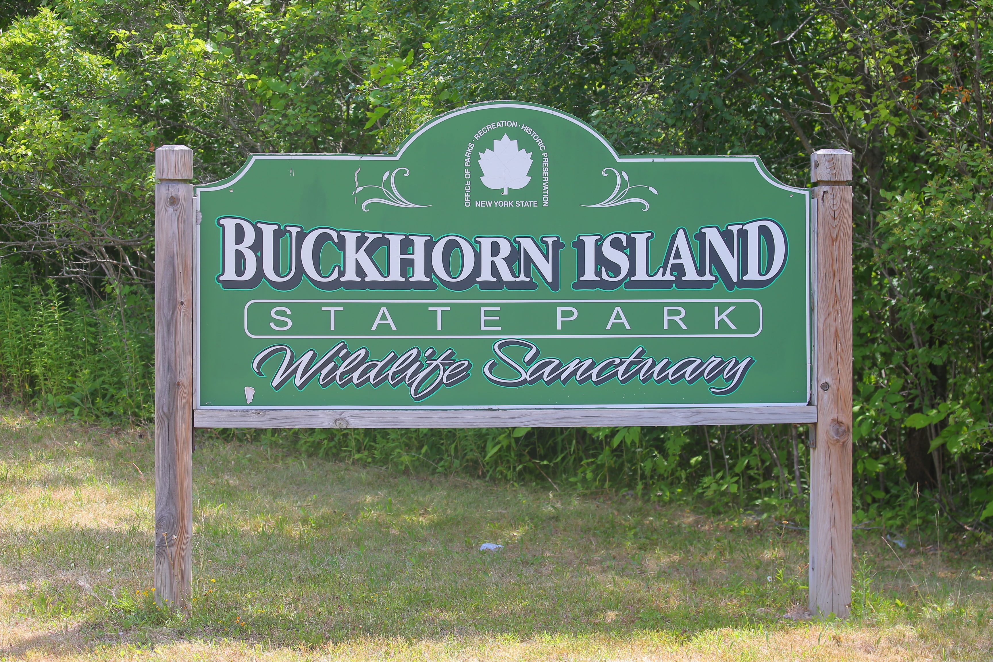 On Friday, Nov. 25, Naturalist Tom Kerr will be leading a hike through Buckhorn Island State Park on Grand Island from 10 a.m. to 1 p.m. The focus will be on migrating waterfowl through the area. (John Hickey/Buffalo News)