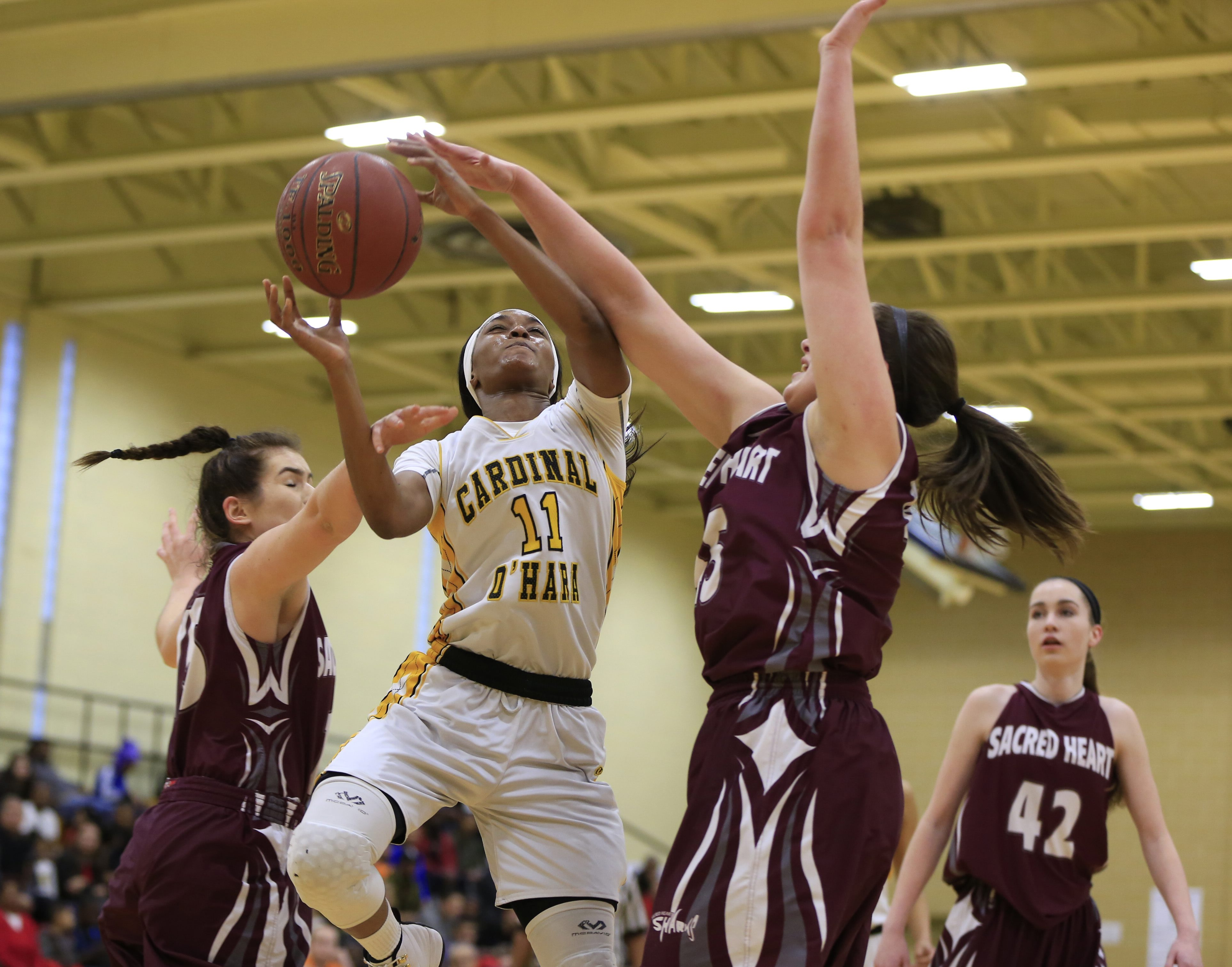 Cardinal O'Hara's Anndea Zeigler leads another strong team for the Hawks. (Harry Scull Jr./Buffalo News file photo)