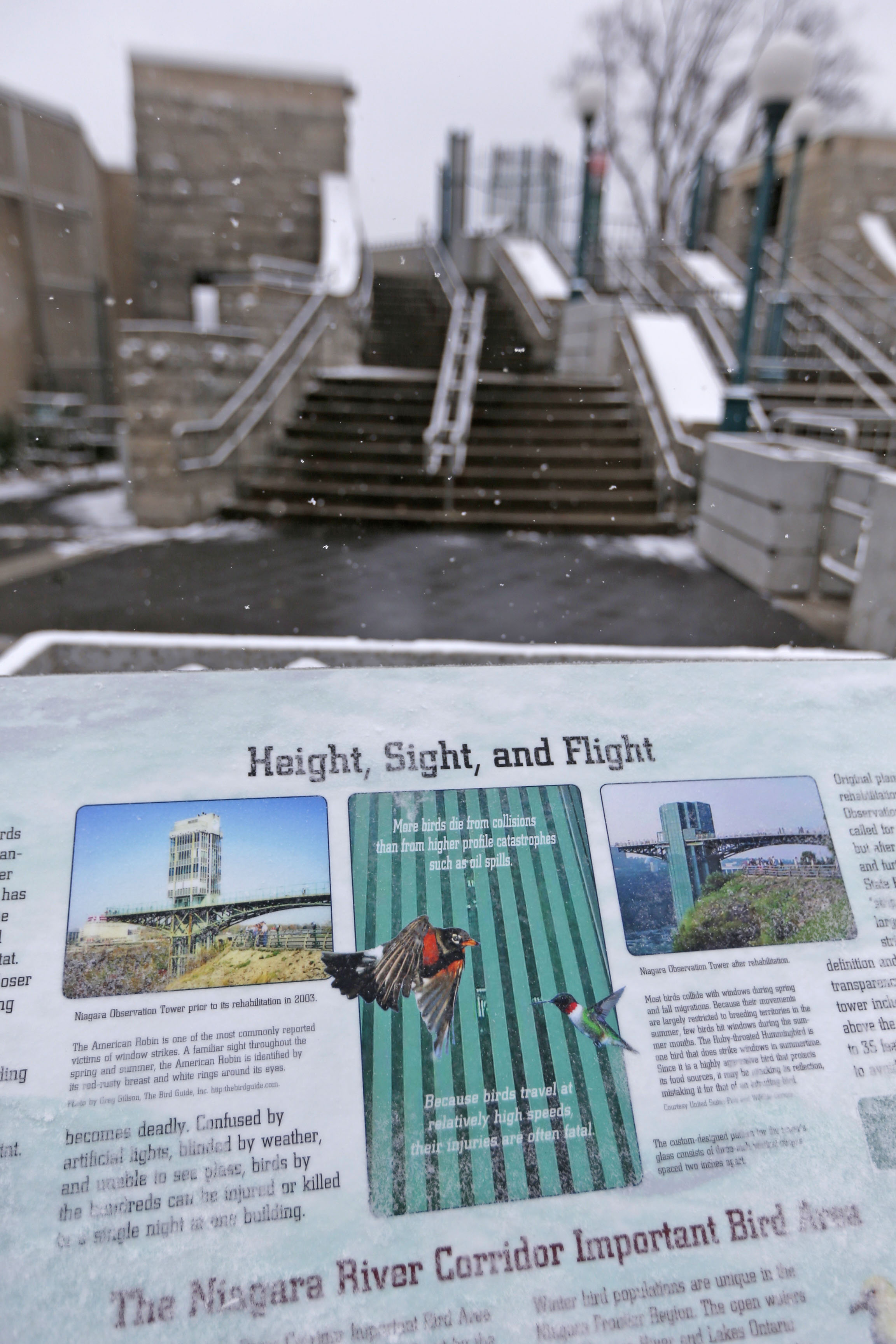 An informational sign outside the Niagara Falls Observation Tower informs visitors about the bird-friendly glass. (Robert Kirkham/Buffalo News)