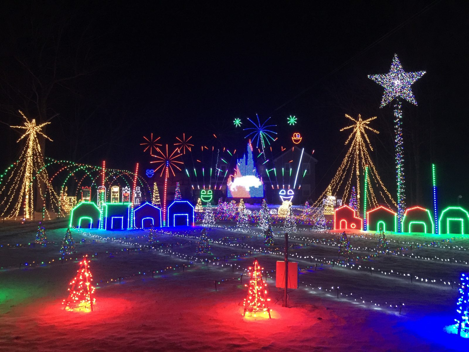 This holiday light display won a Lake View family $50,000 from the ABC reality show 'Great Christmas Light Fight.' (Courtesy of the Field family)