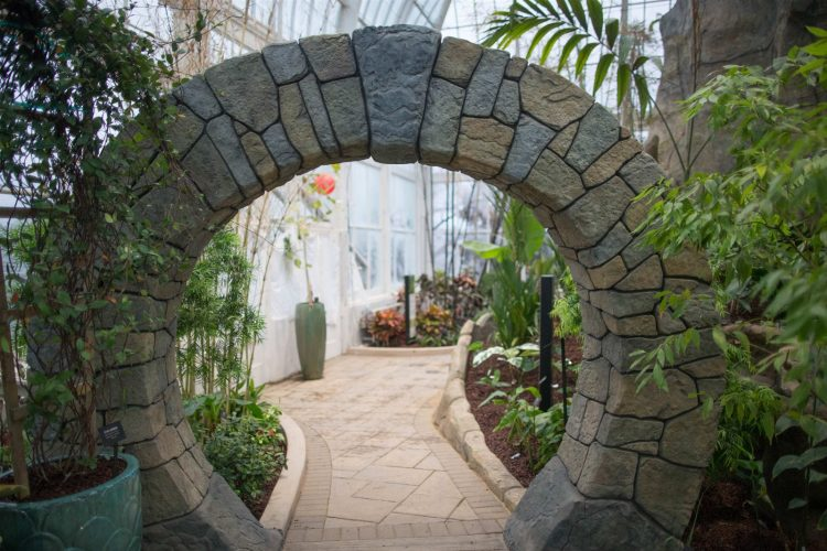 New exhibits at the Botanical Gardens