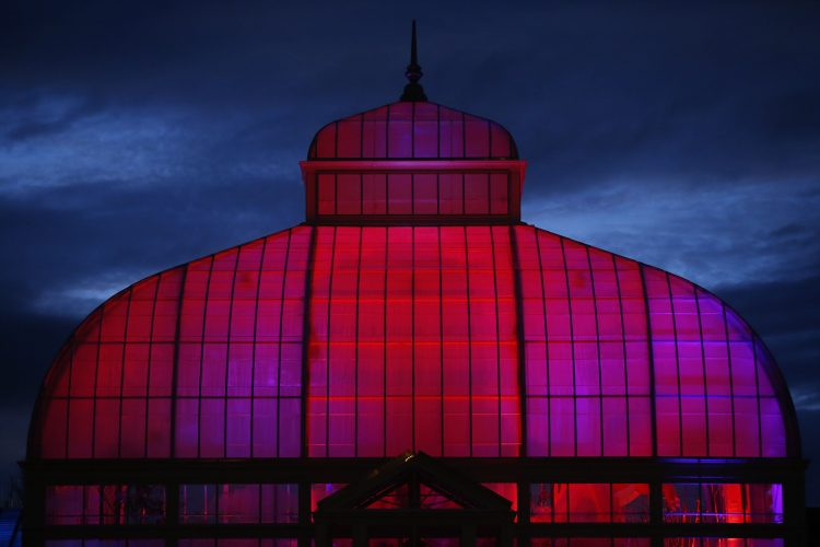 Botanical Gardens to be bathed in light for annual Lumagination