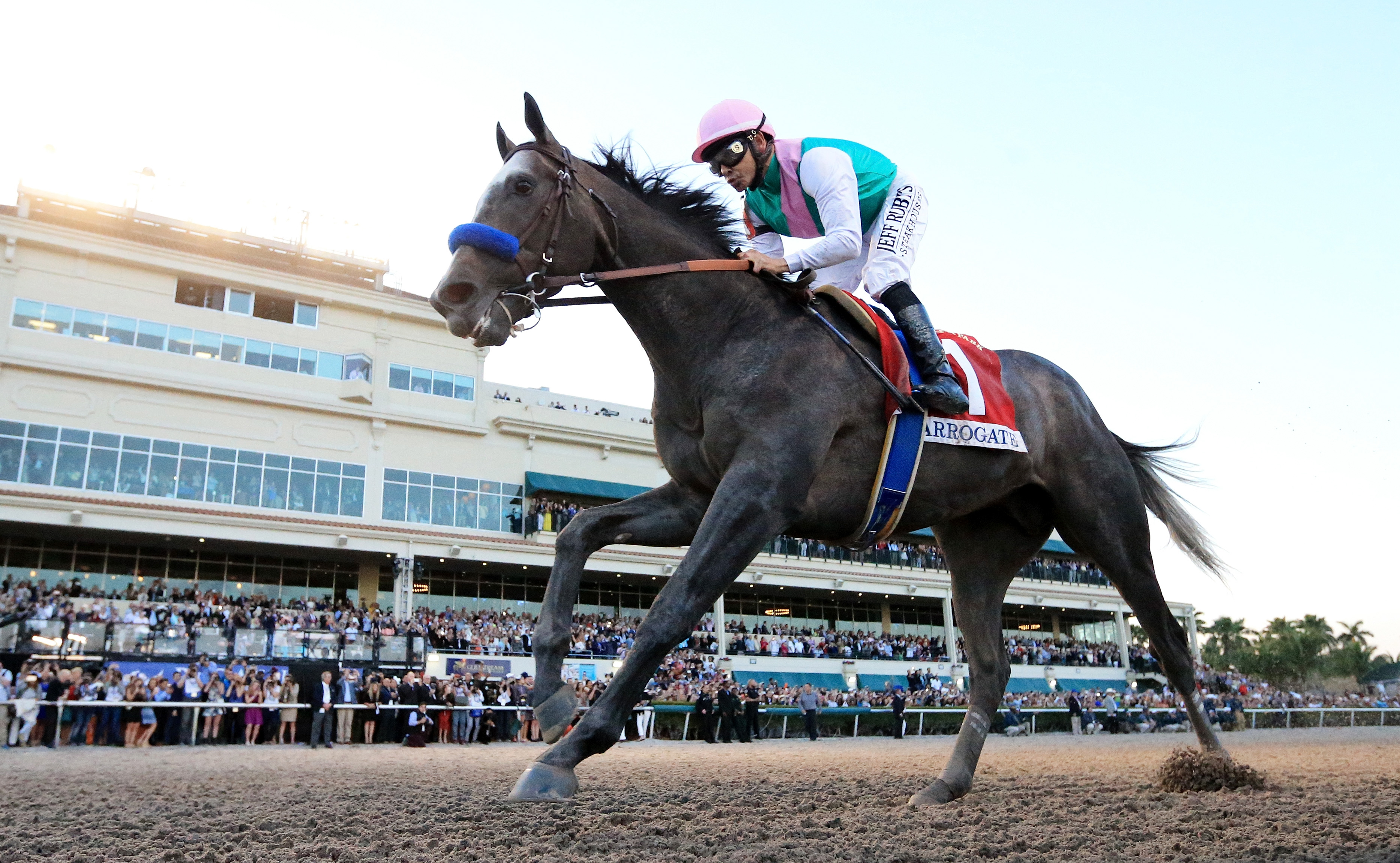 Arrogate crosses the finishline to win the $12 Million Pegasus World Cup Invitational at Gulfstream Park. (Getty Images)