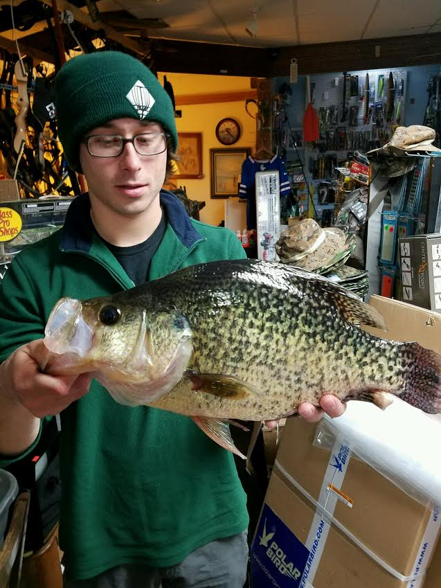 Evan Walsh of  Lancaster caught this bomber crappie last week ice fishing off Long Point, Chautauqua Lake. He caught it on a jig with 2-pound fluorocarbon line, and it weighed in at 3.69 pounds at Captain Bob's in Clarence. The state record is 3.75 pounds from Duck Lake. Walsh weighed it in the day after he caught it, too. Think it lost .06 of a pound? It's likely.