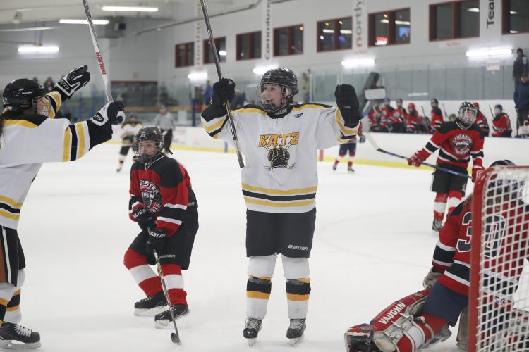descriptive essays on hockey View essay - rhetorical analysis essay-hockey from english ap english at amador valley high hockey rhetorical analysis essay in the passage, hockey, the reader is introduced to a seemingly.
