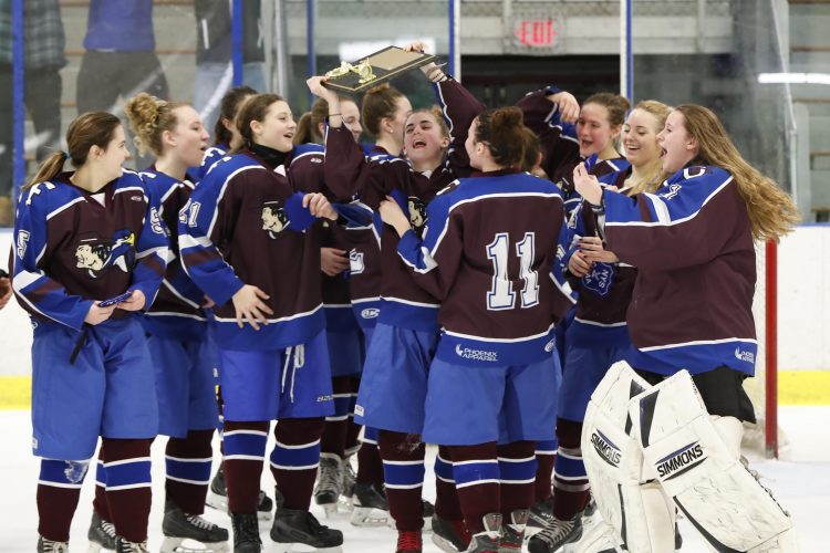 Section VI girls hockey championship