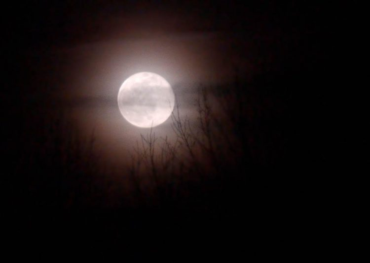 A full moon will appear a quarter-million miles above the Buffalo Niagara region's cloud deck this evening. (Buffalo News file photo)