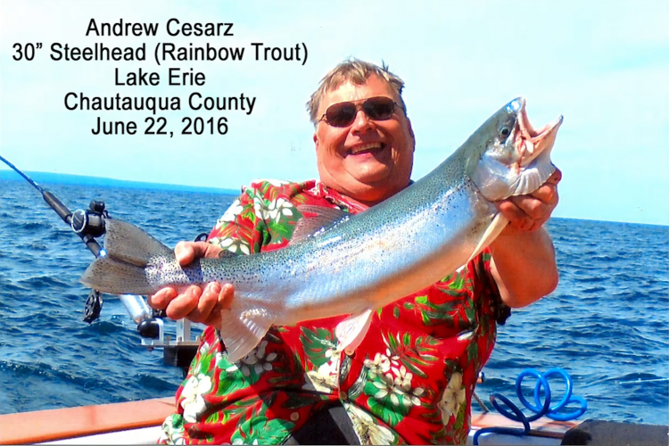 Andrew Cezarz shows off a 30-inch rainbow trout he pulled from Lake Erie last June. (New York State Department of Environmental Conservation)