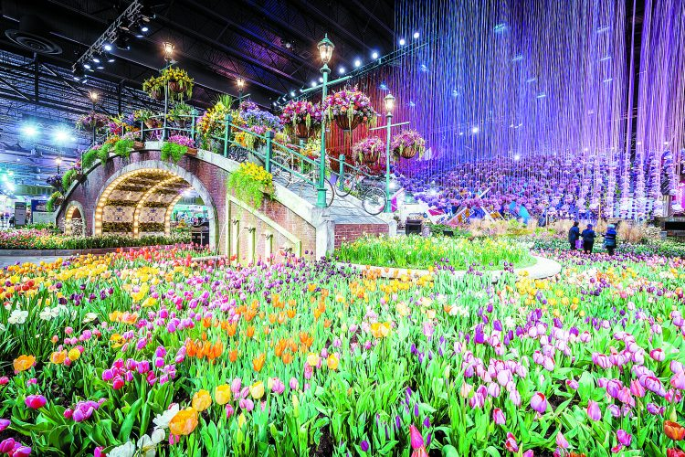 Great Gardening: A visit to the Philadelphia Flower Show