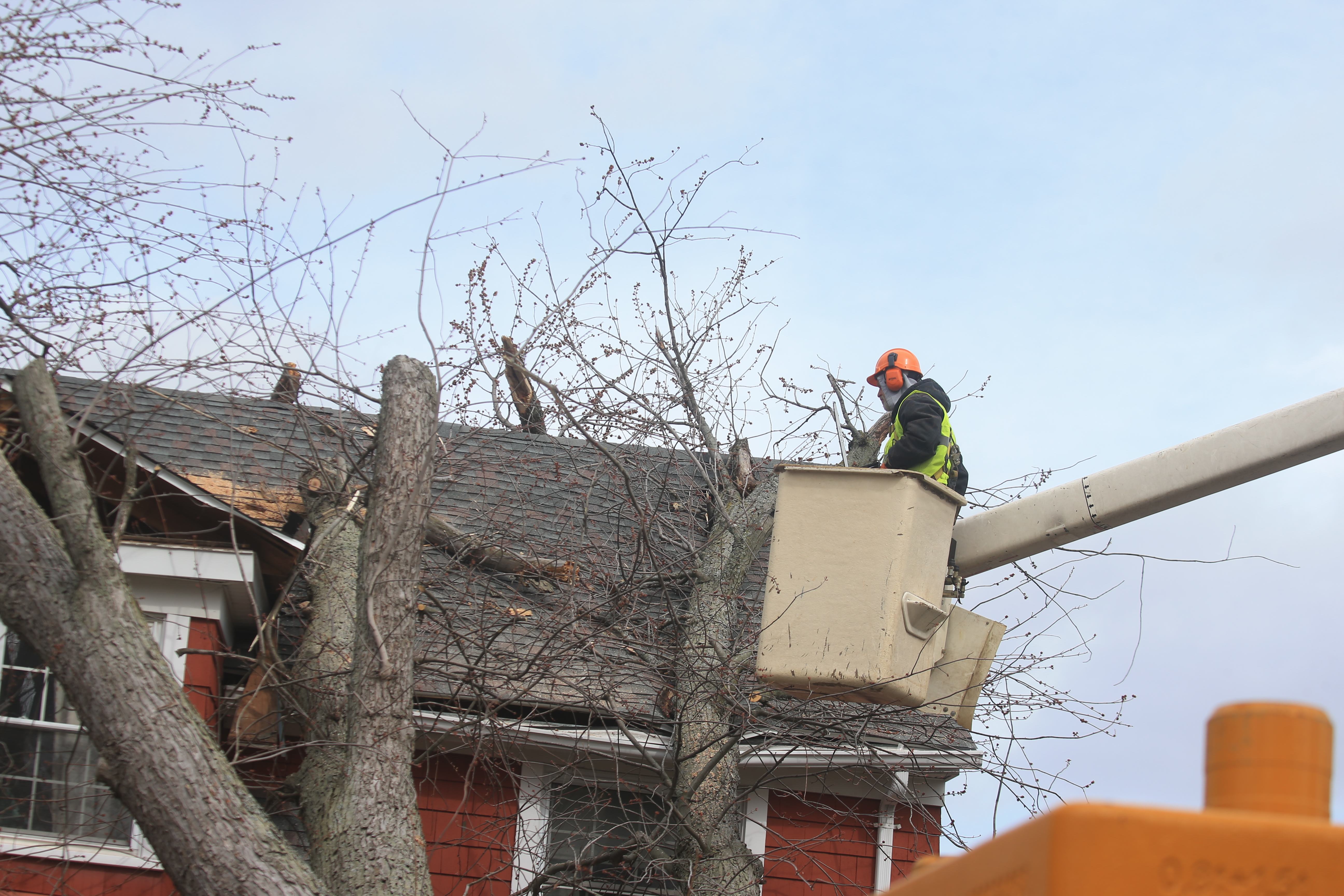Crews from City of Lockport Forestry, Highway and Parks Department, with help from Clark Rigging & Rental Corporation,  removed a downed tree   from Howard Luff's home on Morrow Street,  in Lockport, N.Y. on  Wednesday,  March 8, 2017. (John Hickey / Buffalo News)
